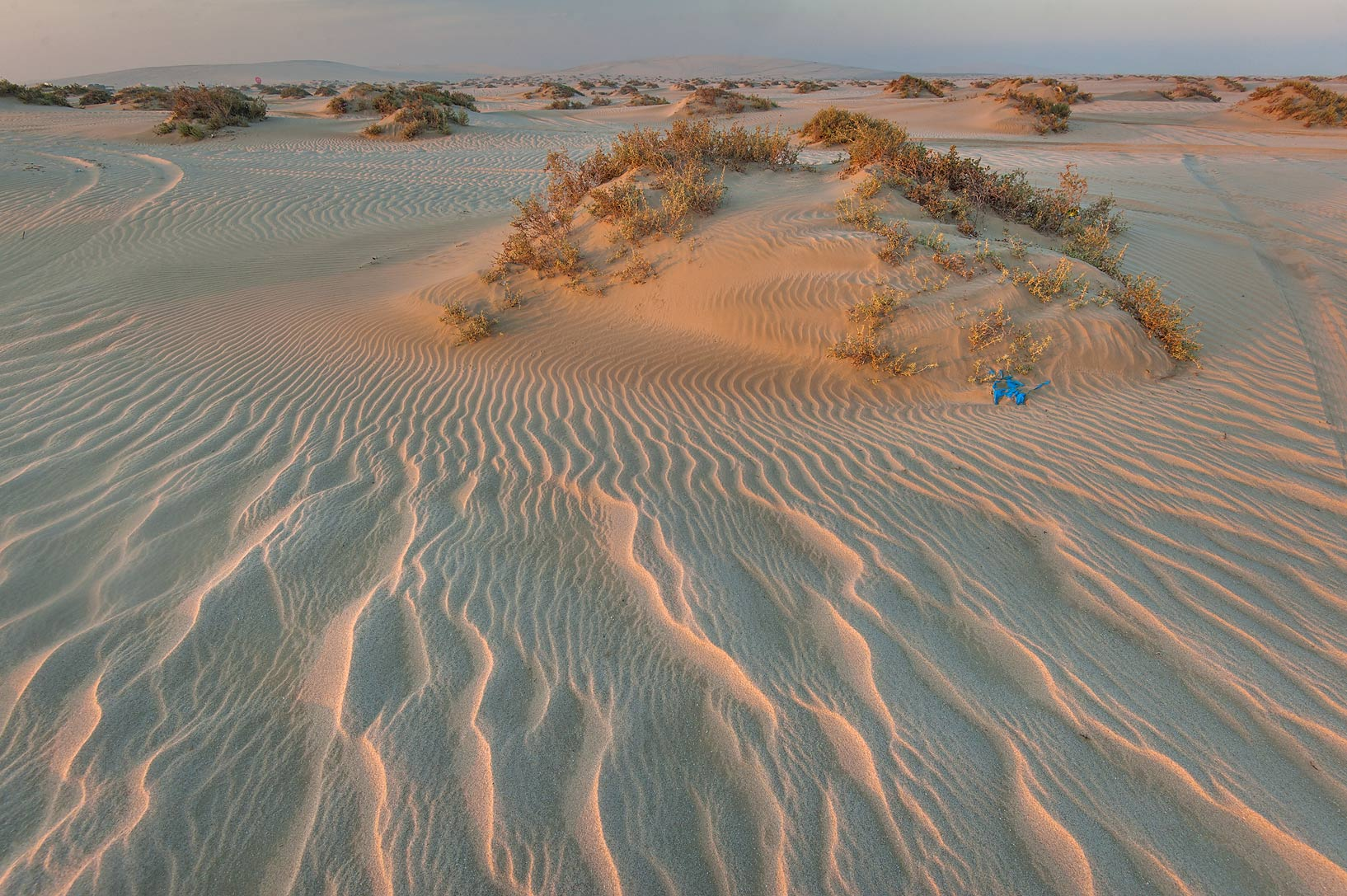 Windblown sand mounds and ripples at sunrise near...Resort near Mesaieed. Southern Qatar