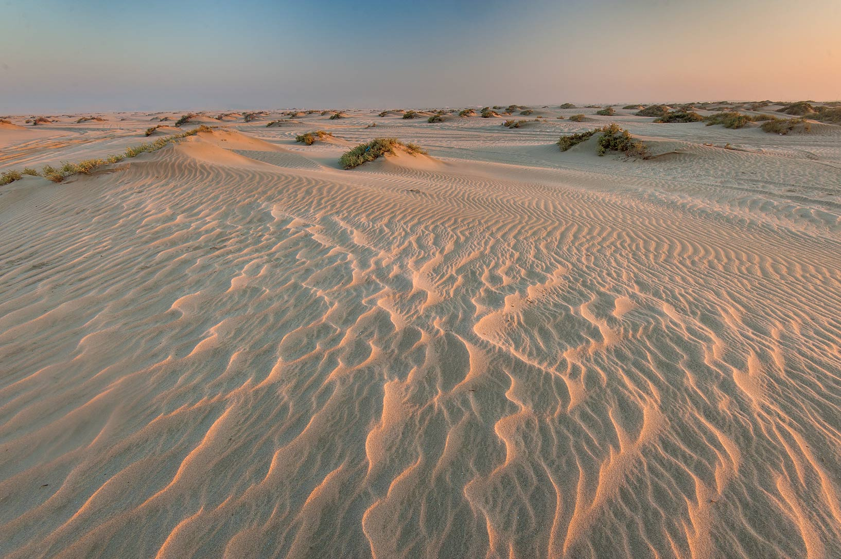 Pattern of windblown sand at sunrise near Sealine...Resort near Mesaieed. Southern Qatar