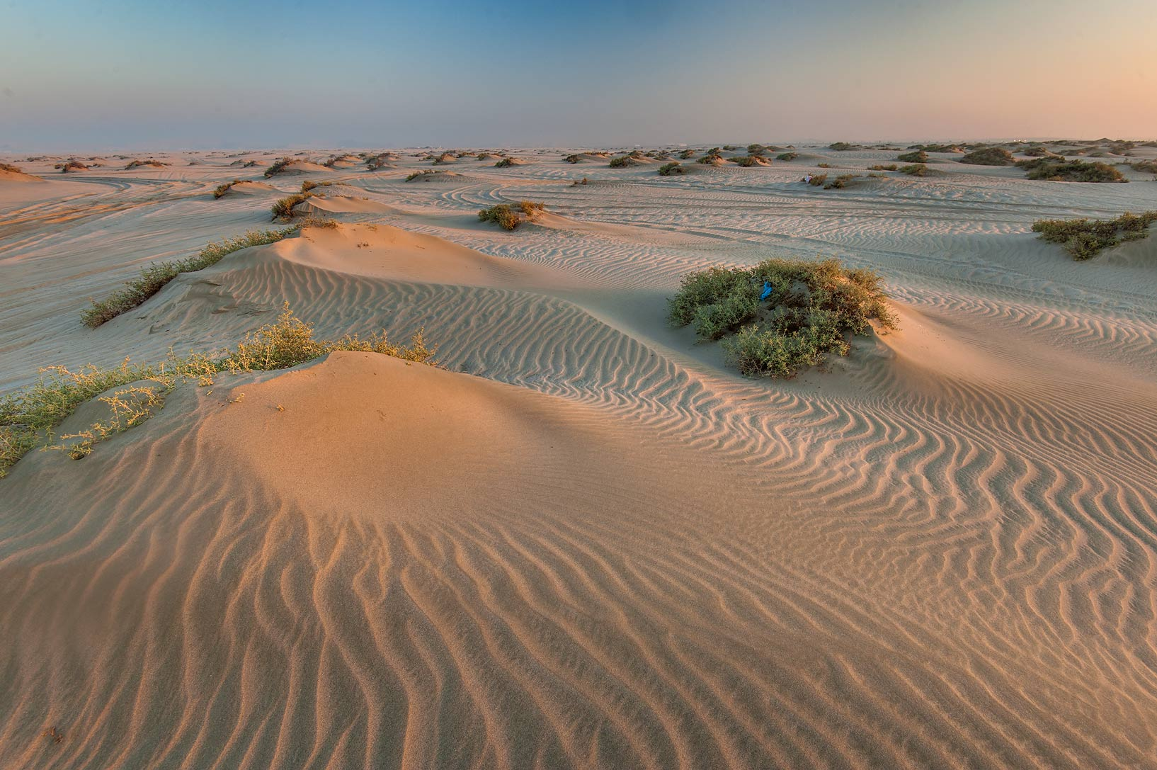 Sand ripples and low dunes at sunrise near...Resort near Mesaieed. Southern Qatar