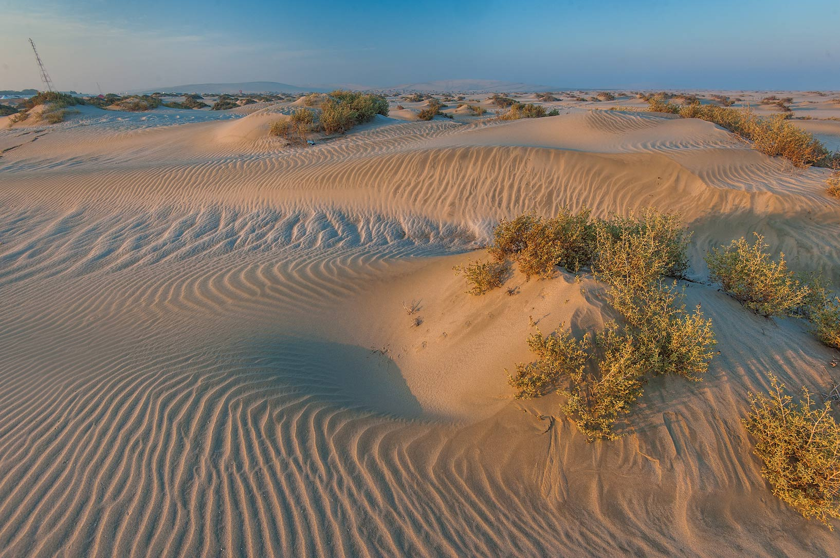 Wavy pattern of sand ripples and sand mounds with...Resort near Mesaieed. Southern Qatar