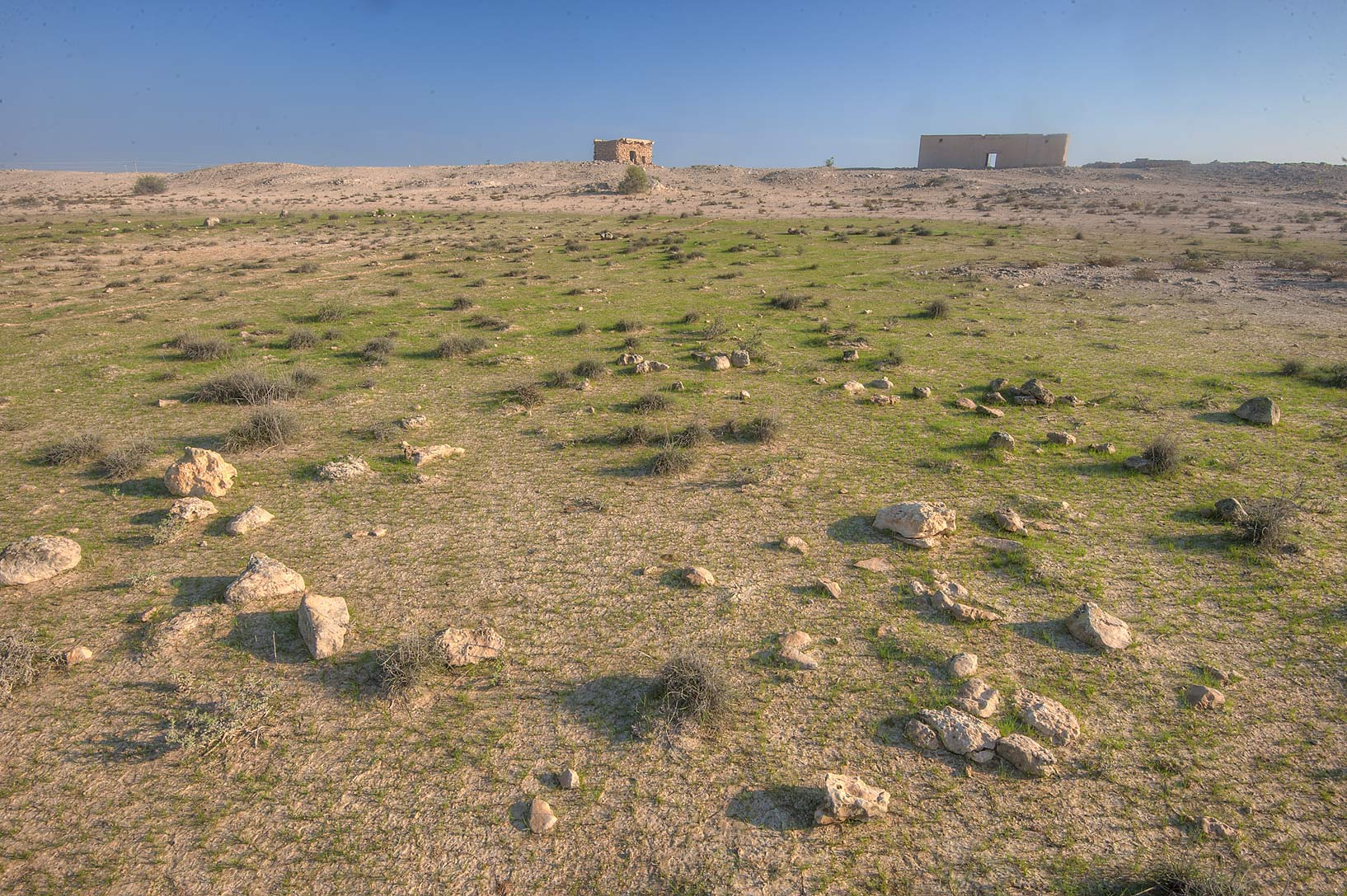 Green depression behind Jabal Al Jassasiya near...on north-eastern coast. Qatar