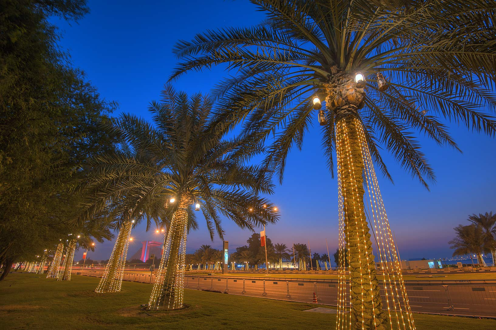 Light bulbs on palm trees on Corniche in West Bay. Doha, Qatar