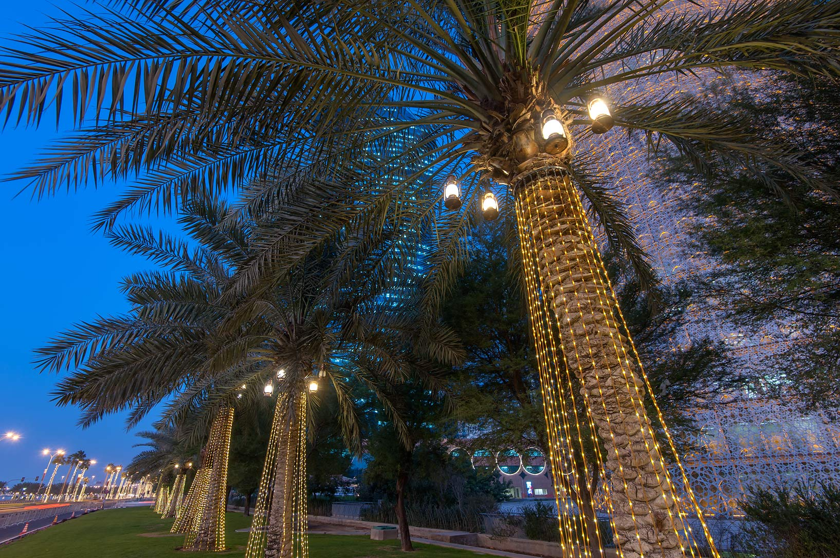 Lights on palm trees on Corniche in West Bay. Doha, Qatar