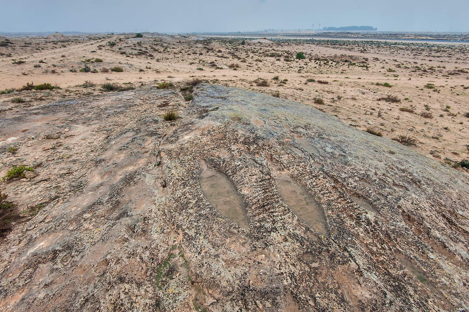 Rock carvings of fishing boats at rain on a rocky...site, on north-eastern coast. Qatar