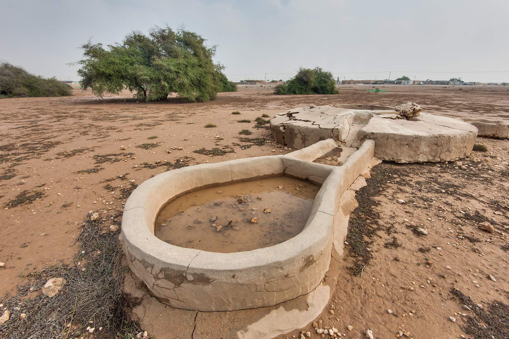 Drinking pool of Ain Numan water well in Al Nuaman (Naim tribe, Nuaimiya). Northern Qatar