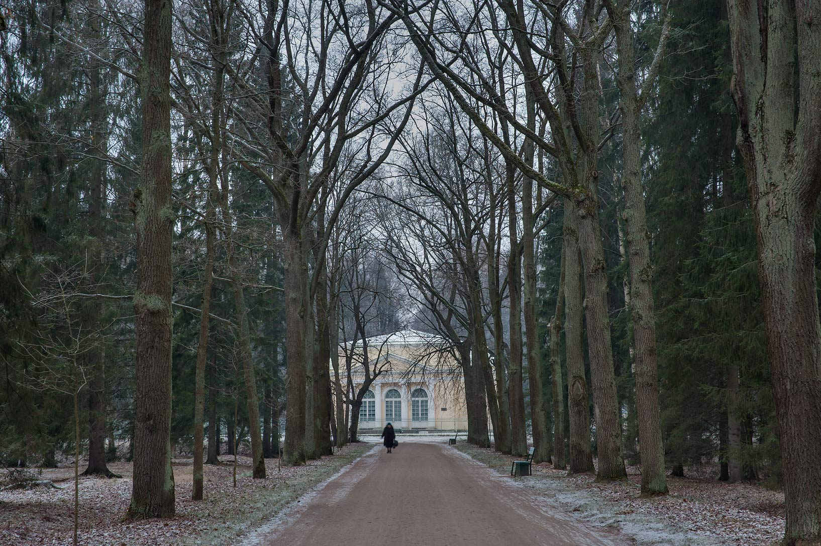 Green Woman Alley in Pavlovsk Park. Pavlovsk, suburb of St.Petersburg, Russia
