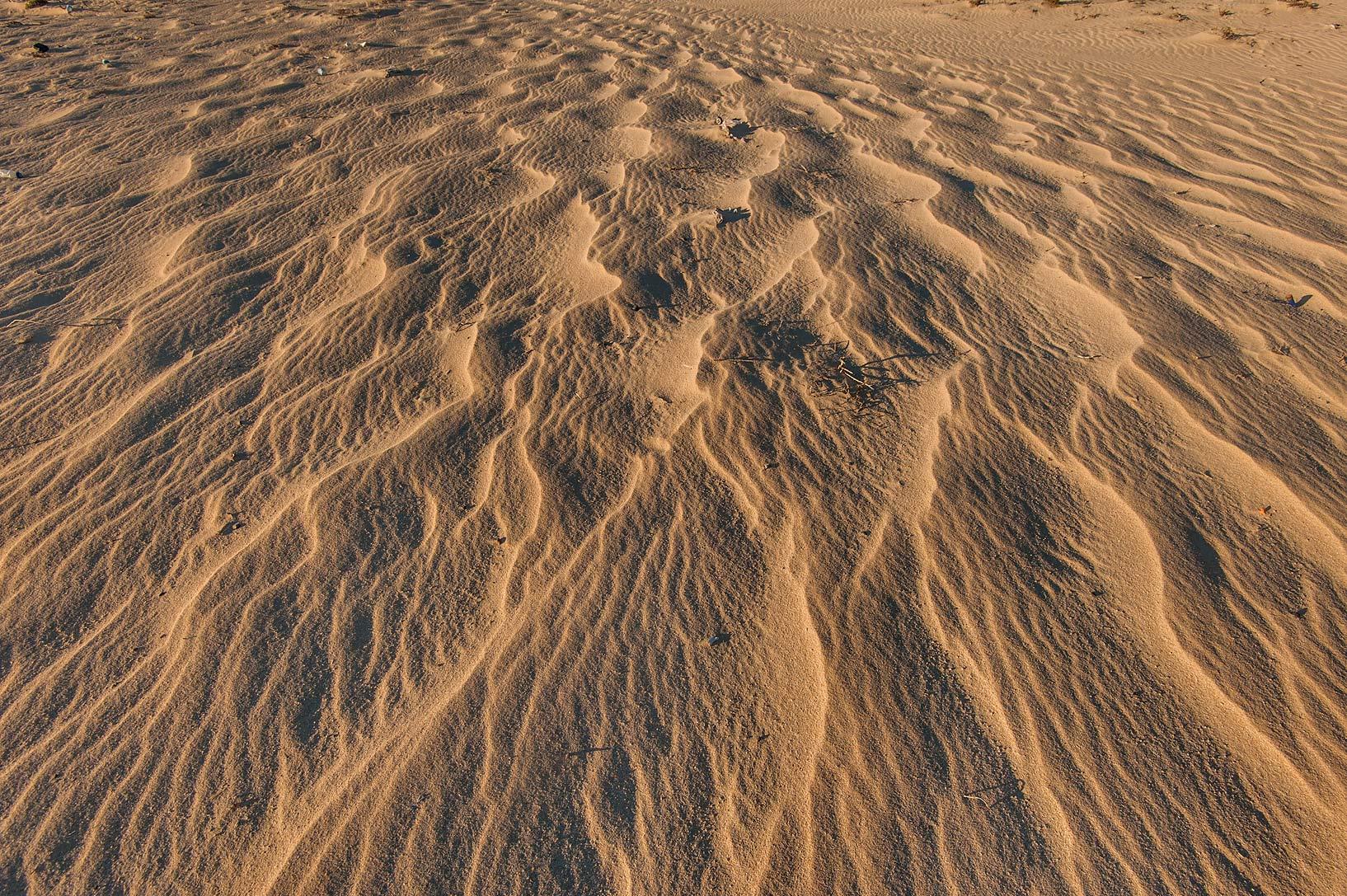 photo 174301 windblown sand near a beach in the area of