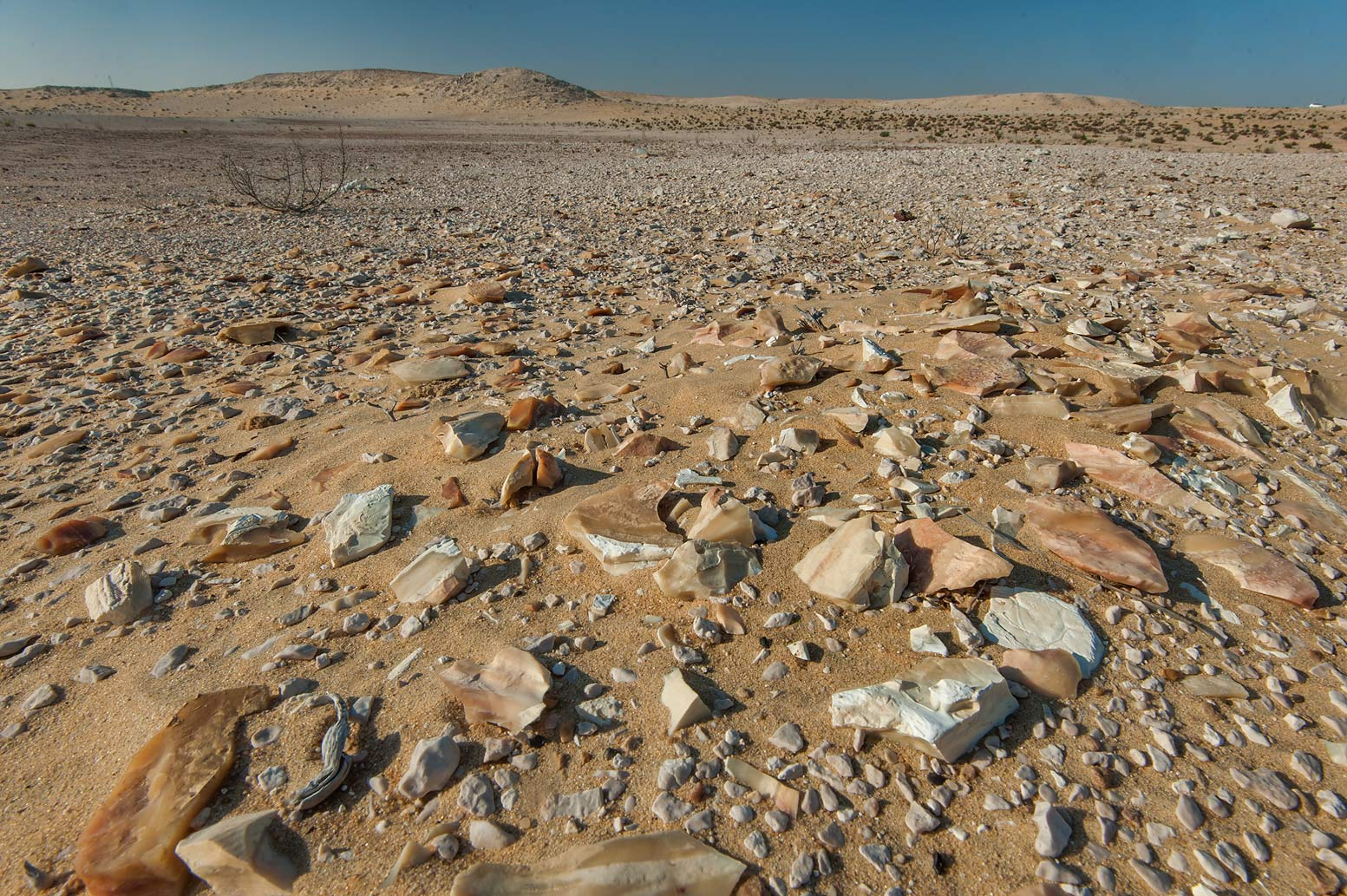 Flint stones in a desert on roadside of a road to Sawda Natheel. Southern Qatar