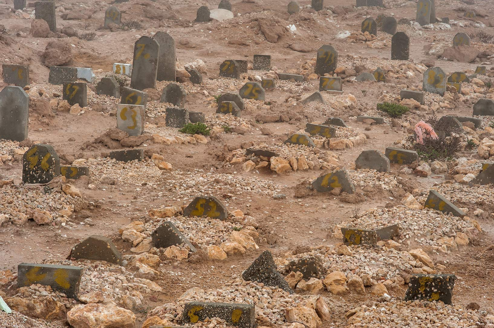 Small-size tombstones of Al Khor Cemetery. North from Al Khor, Qatar