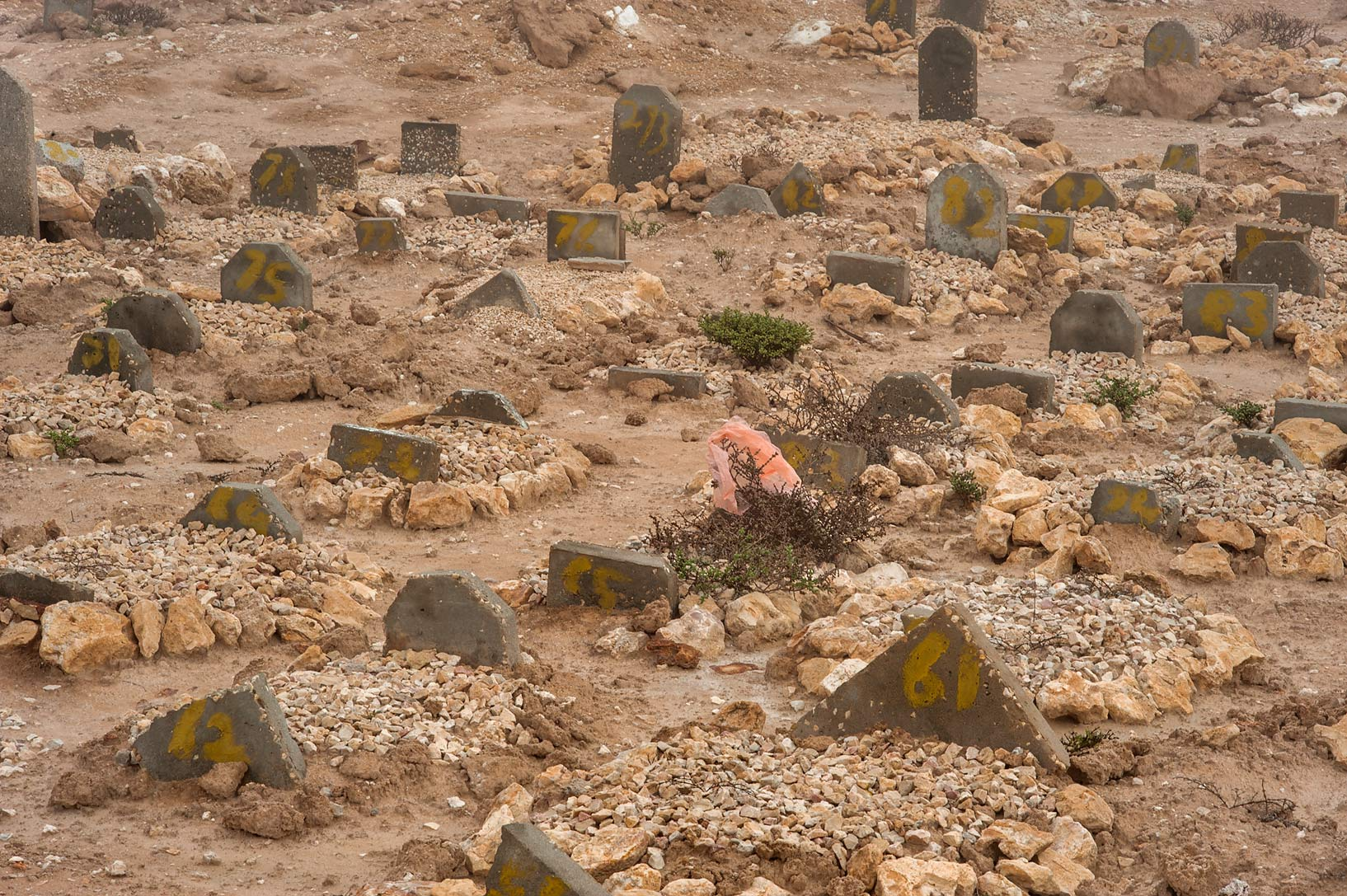 Tombstones of various shapes of Al Khor Cemetery. North from Al Khor, Qatar