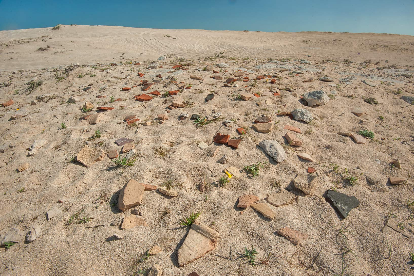 Potsherds (fragments of pottery) in sand south from Fuwairit. Northern Qatar