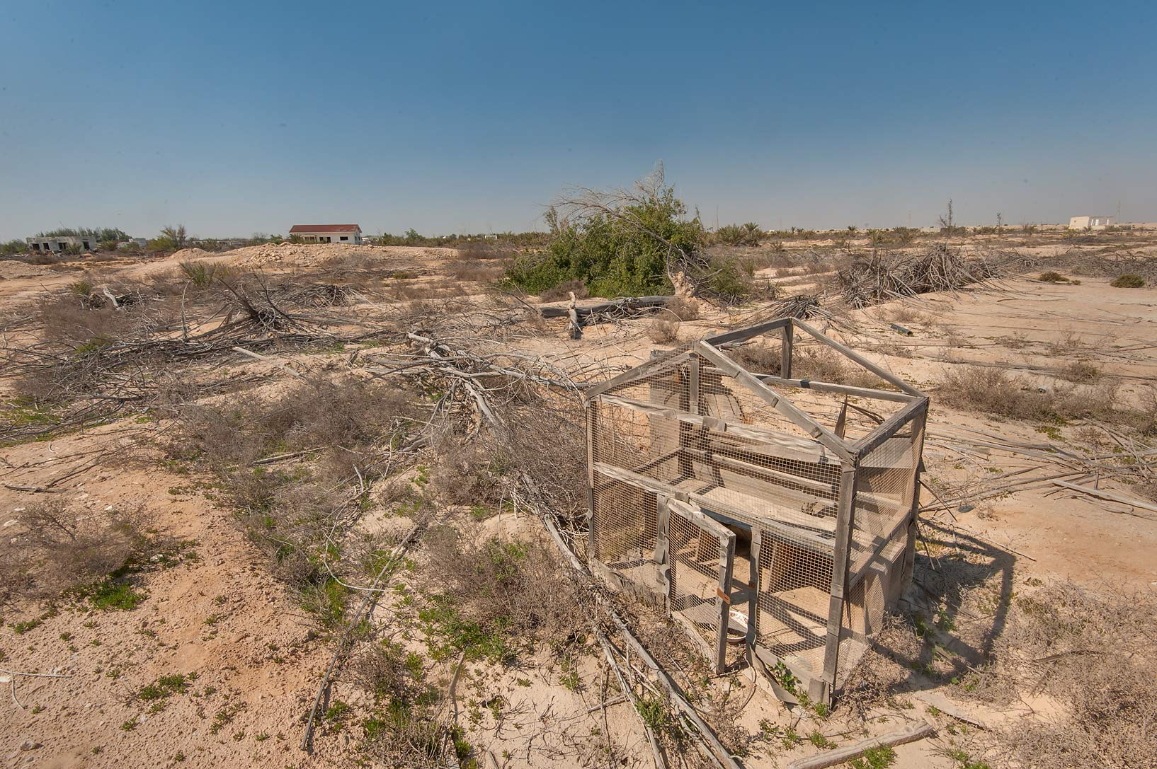Animal cage in abandoned gardens in area of Ras Laffan farms. North-eastern Qatar