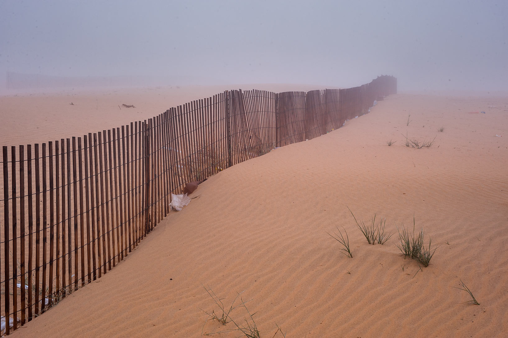Sand fence (sandbreak) on roadside of Salwa Rd...of Khashem Al Nekhsh. Southern Qatar