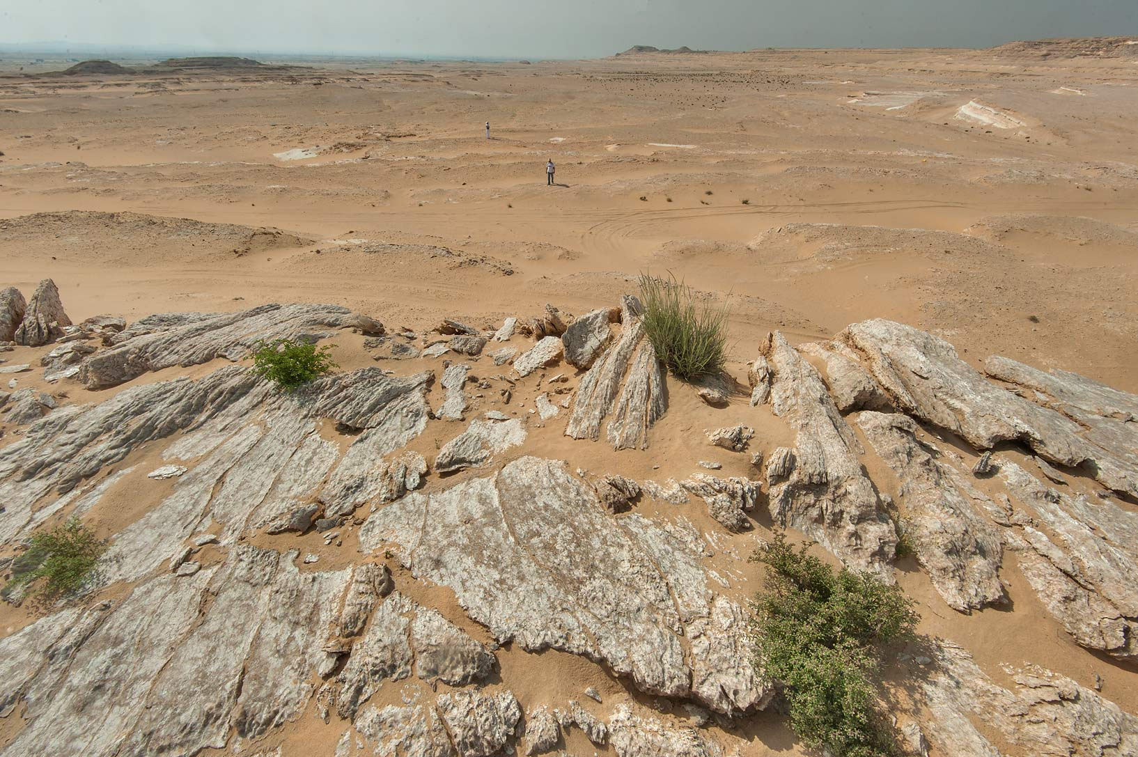 Slabs of gypsum crystals (selenite) in area of...an Nakhsh) in south-western Qatar