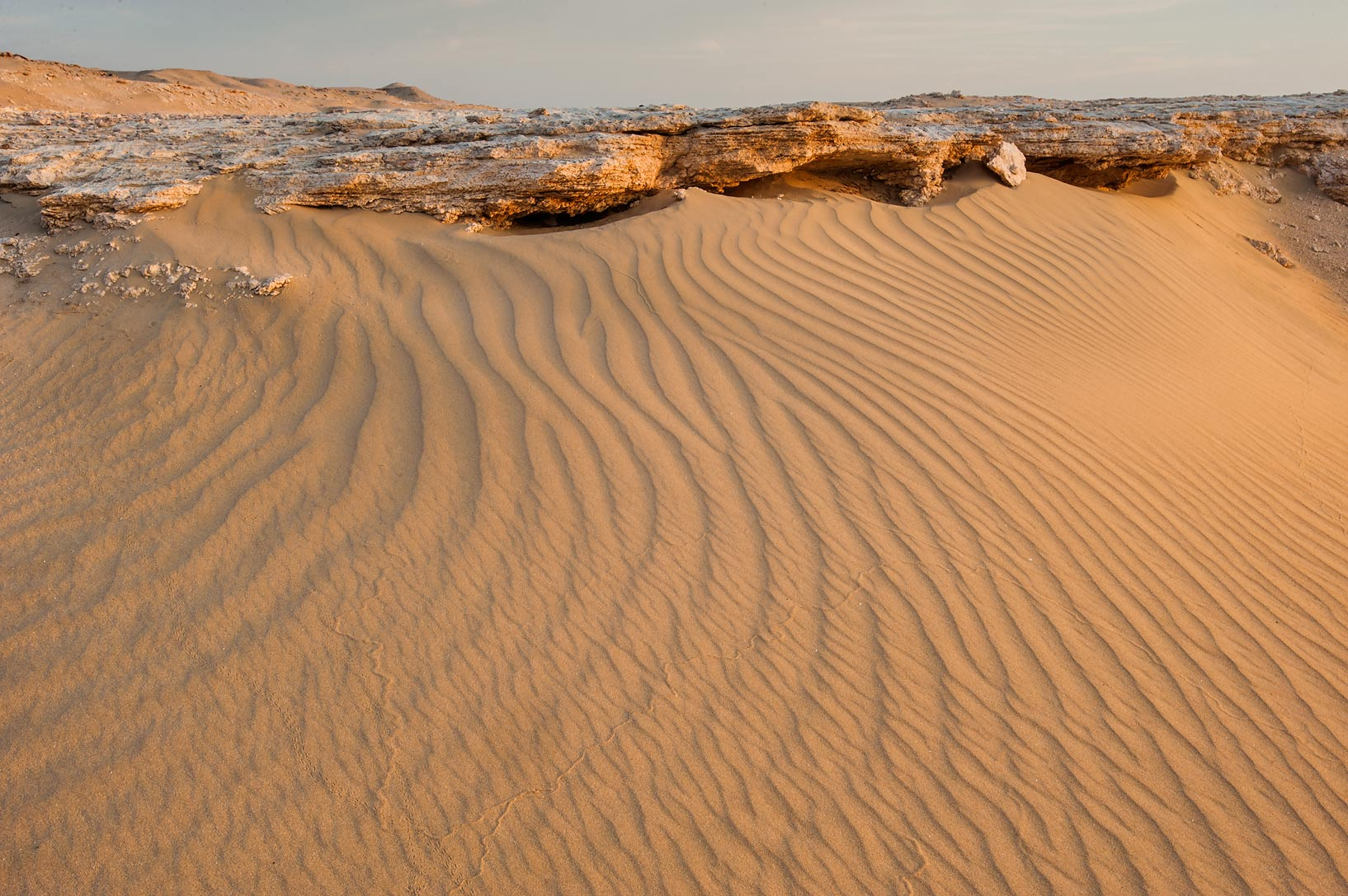 Sand ripples in area of Jebel Al-Nakhsh (Khashm an Nakhsh). South-western Qatar