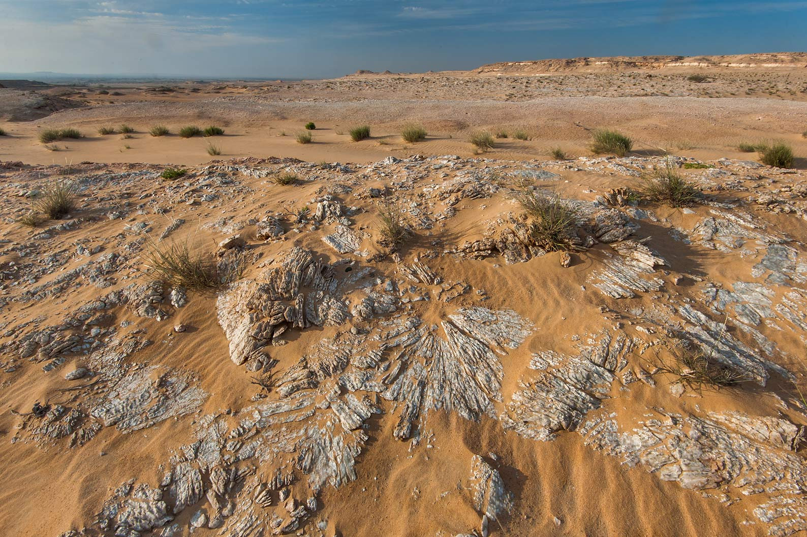 Plateau with gypsum crystals (selenite) in area...Khashm an Nakhsh). South-western Qatar