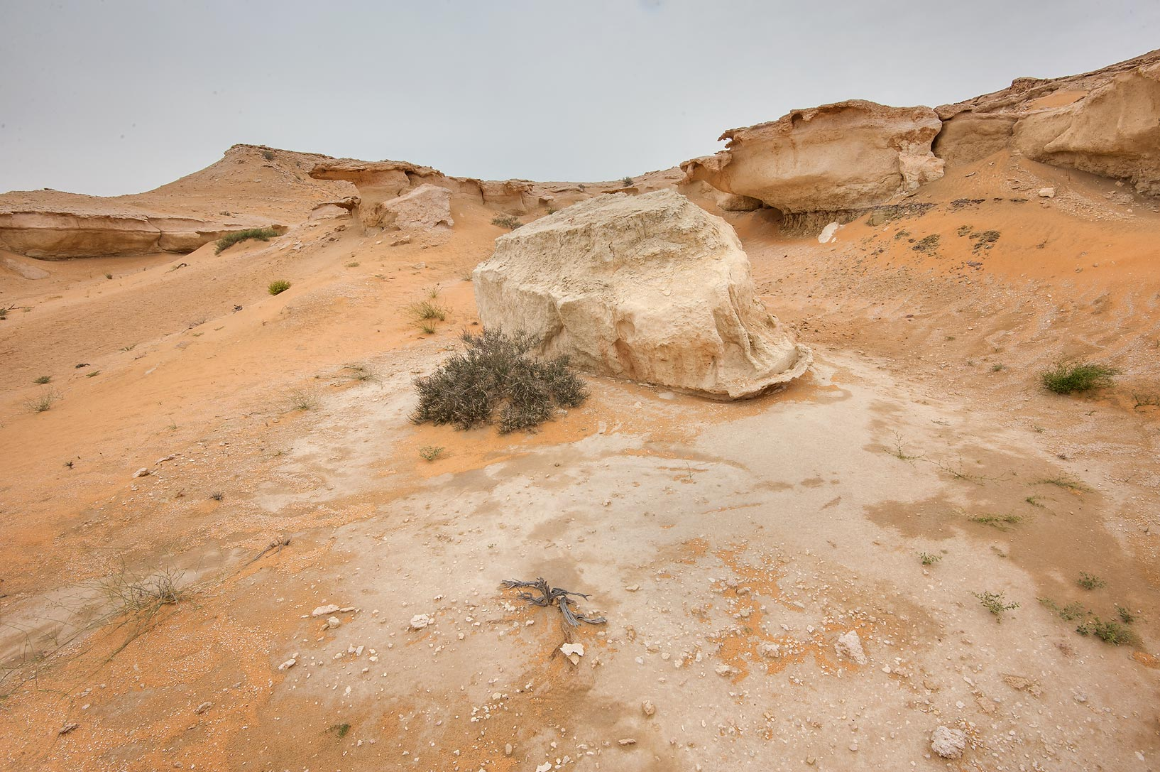 Broken pieces of limestone cliffs in Maszhabiya...Reserve near Abu Samra. Southern Qatar