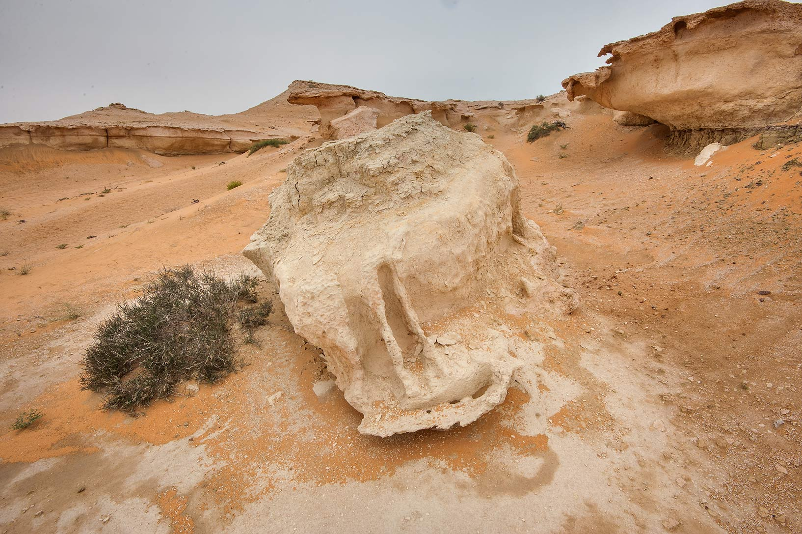 Detached piece of limestone cliffs in Maszhabiya...Reserve near Abu Samra. Southern Qatar