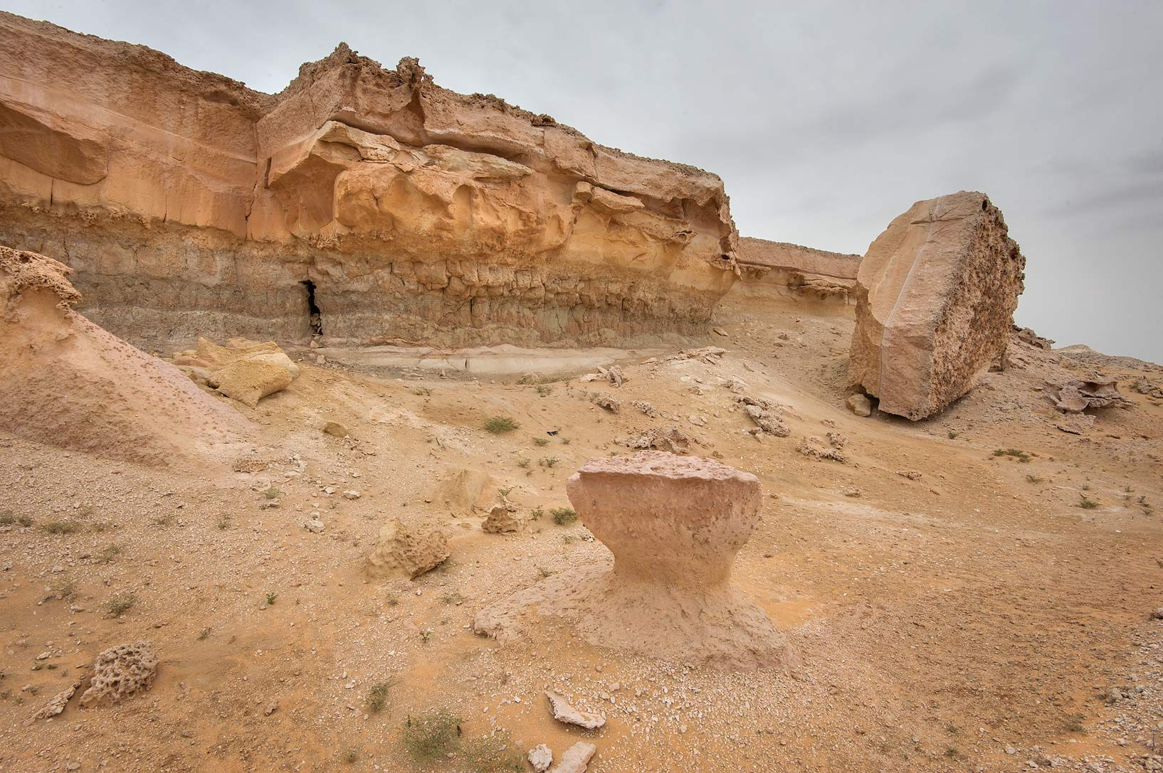 Erosion of the edge of limestone cliffs in...Reserve near Abu Samra. Southern Qatar