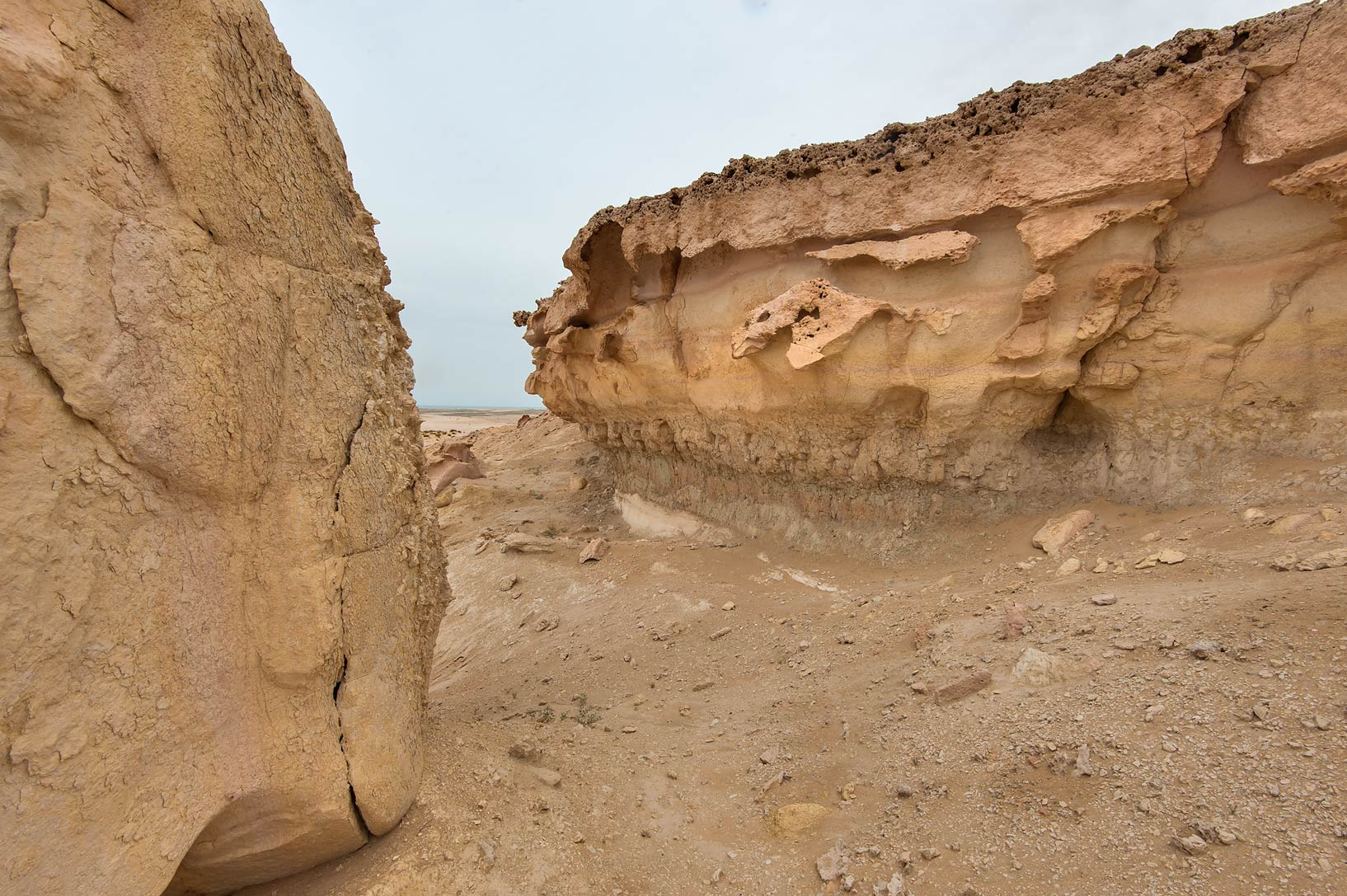 Passage near the edge of limestone cliffs in...Reserve near Abu Samra. Southern Qatar