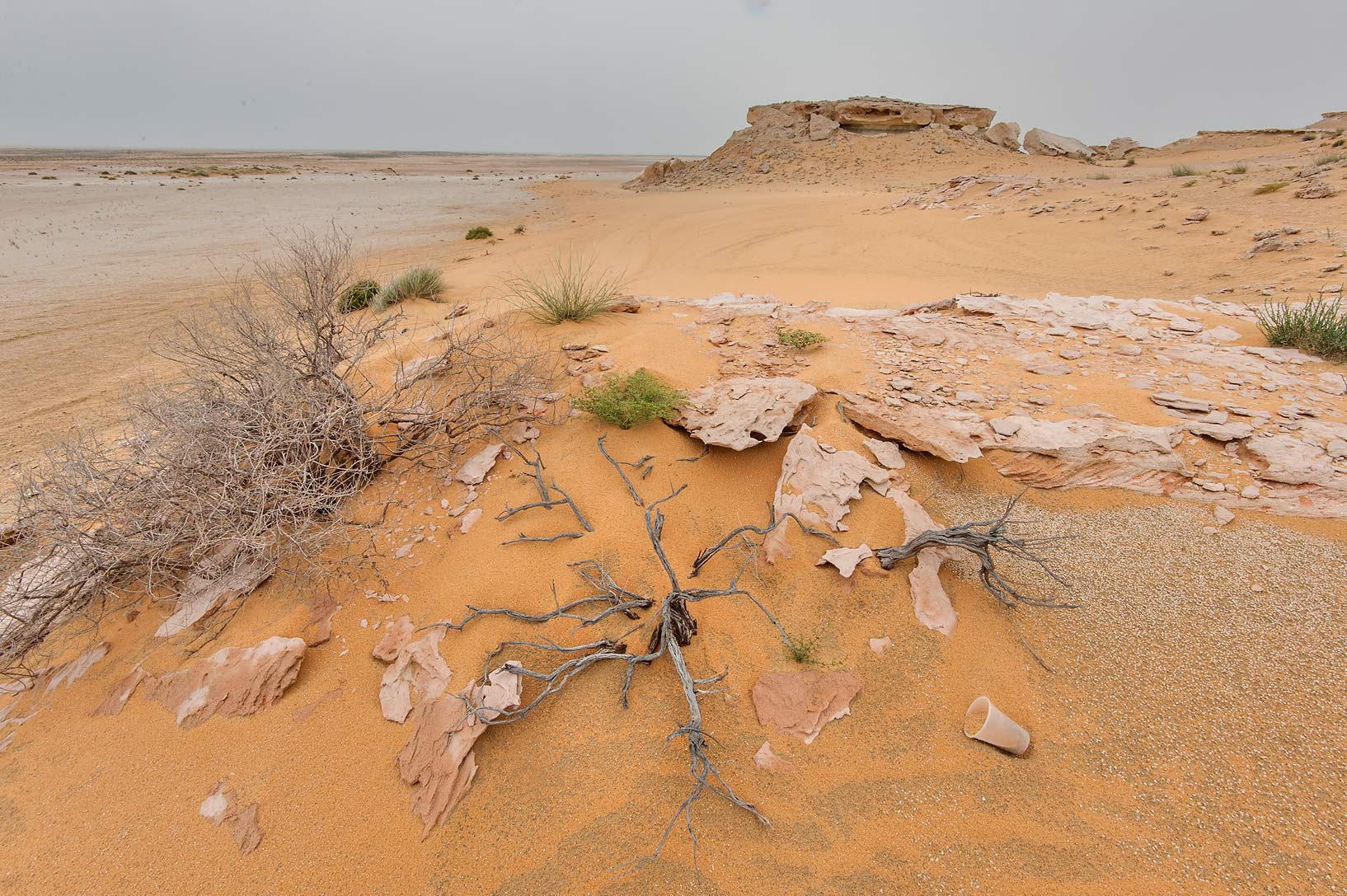 Orange windblown sand near limestone cliffs in...Reserve near Abu Samra. Southern Qatar