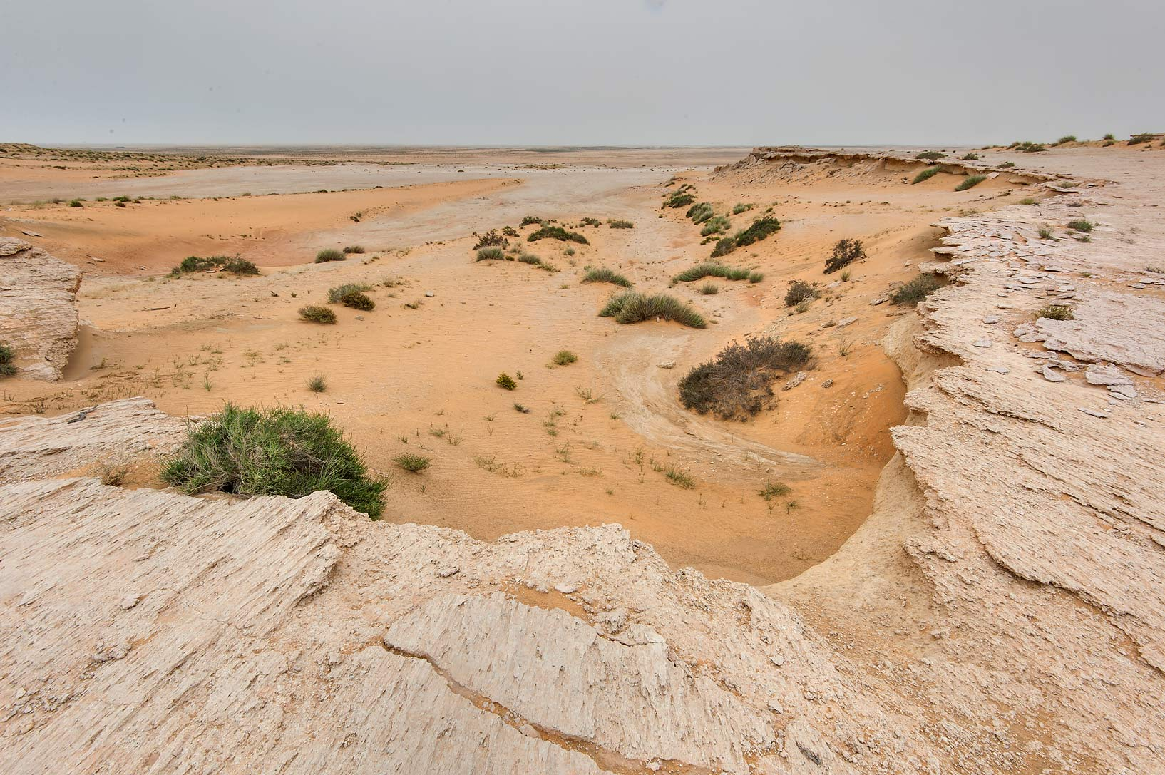 Washed out edge of limestone cliffs in Maszhabiya...Reserve near Abu Samra. Southern Qatar