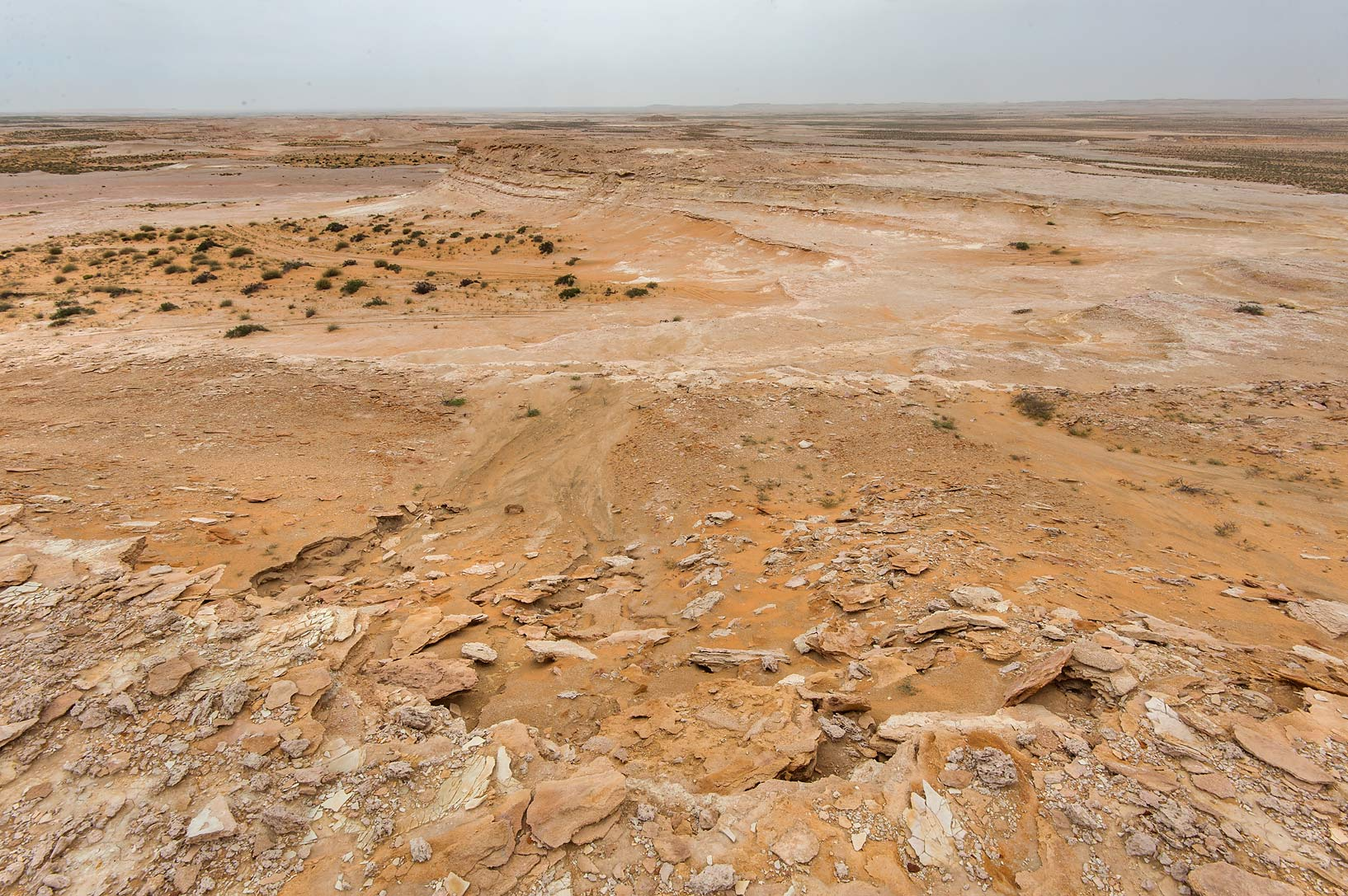 View from the edge of the plateau of a tabletop...Reserve near Abu Samra. Southern Qatar