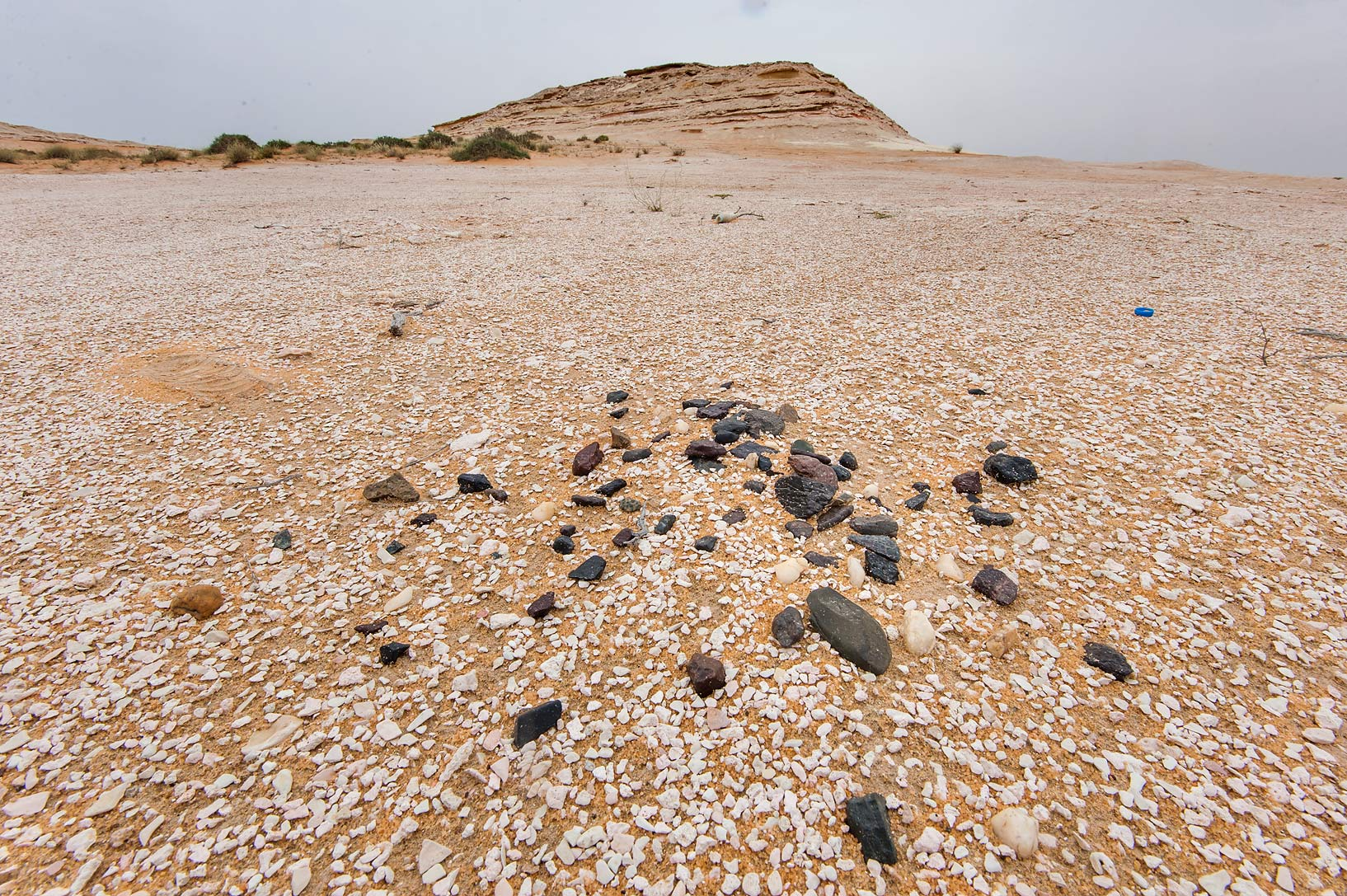 Accumulation of rounded black flint stones...Reserve near Abu Samra. Southern Qatar