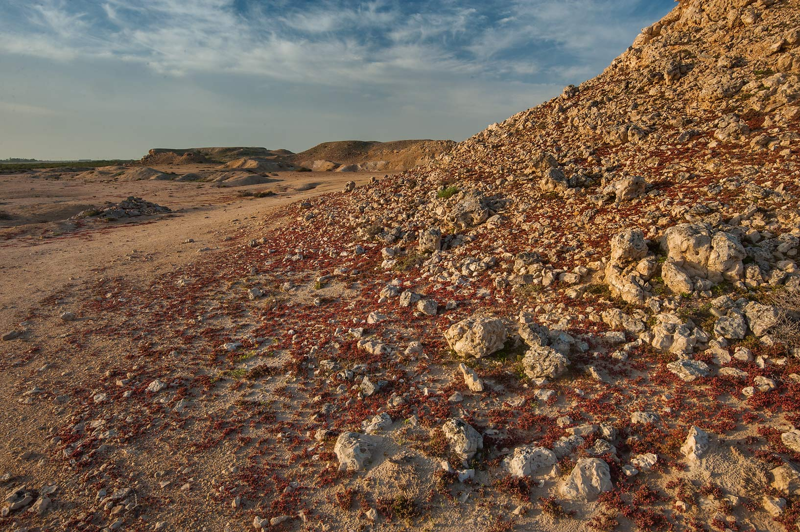 Rocky slope of a hill on Purple Island (Jazirat Bin Ghanim). Al Khor, Qatar