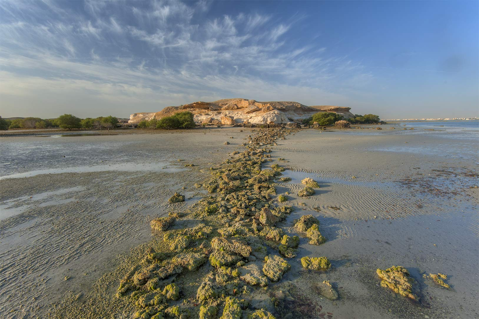 Intertidal stone fish traps at northern tip of...Ghanim) at low tide. Al Khor, Qatar