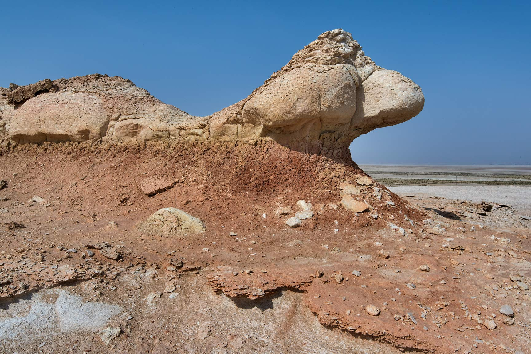 Limestone wind erosion on the tabletop hill in...Reserve near Abu Samra. Southern Qatar