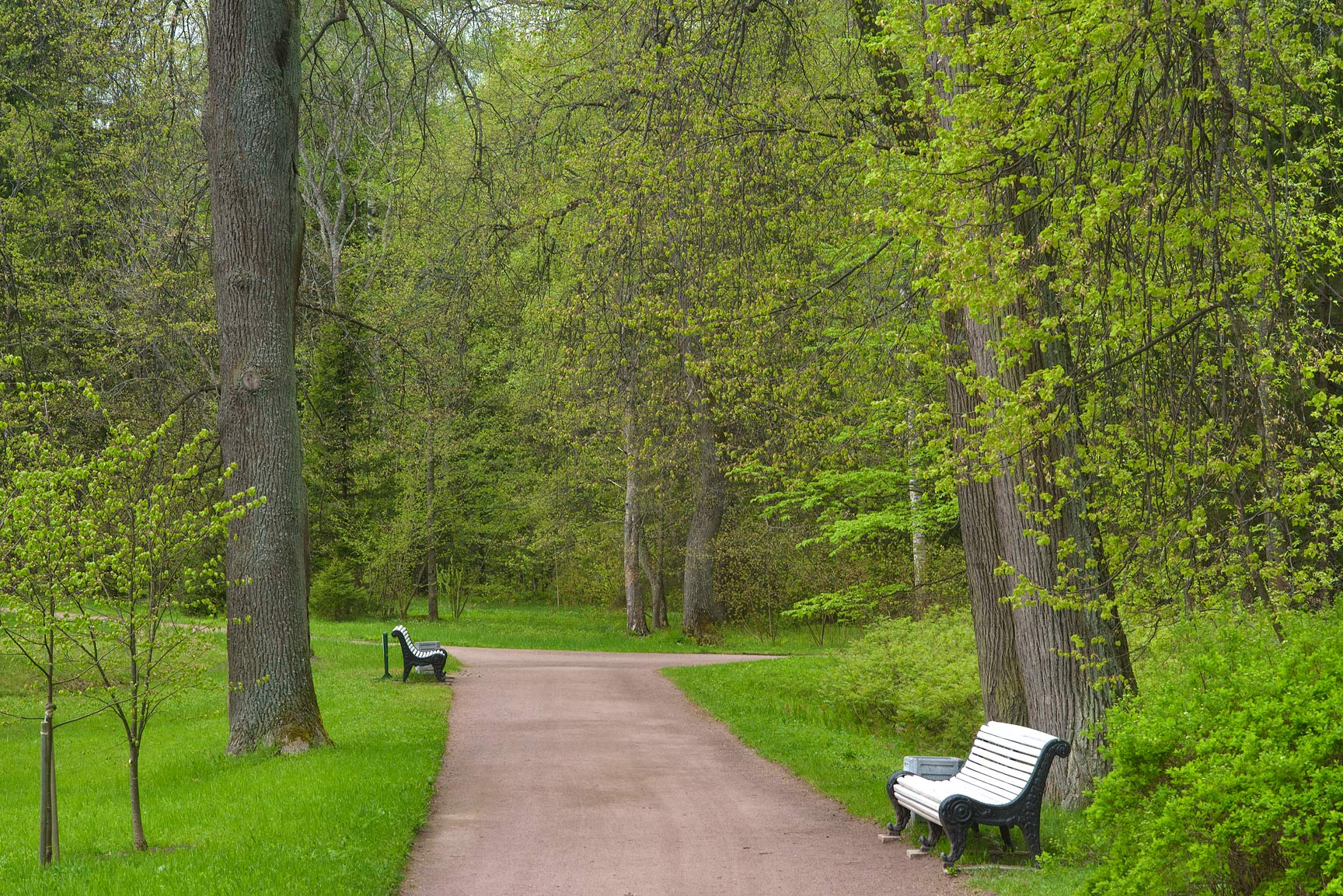 Benches in Upper Garden. Oranienbaum (Lomonosov), a suburb of St.Petersburg, Russia