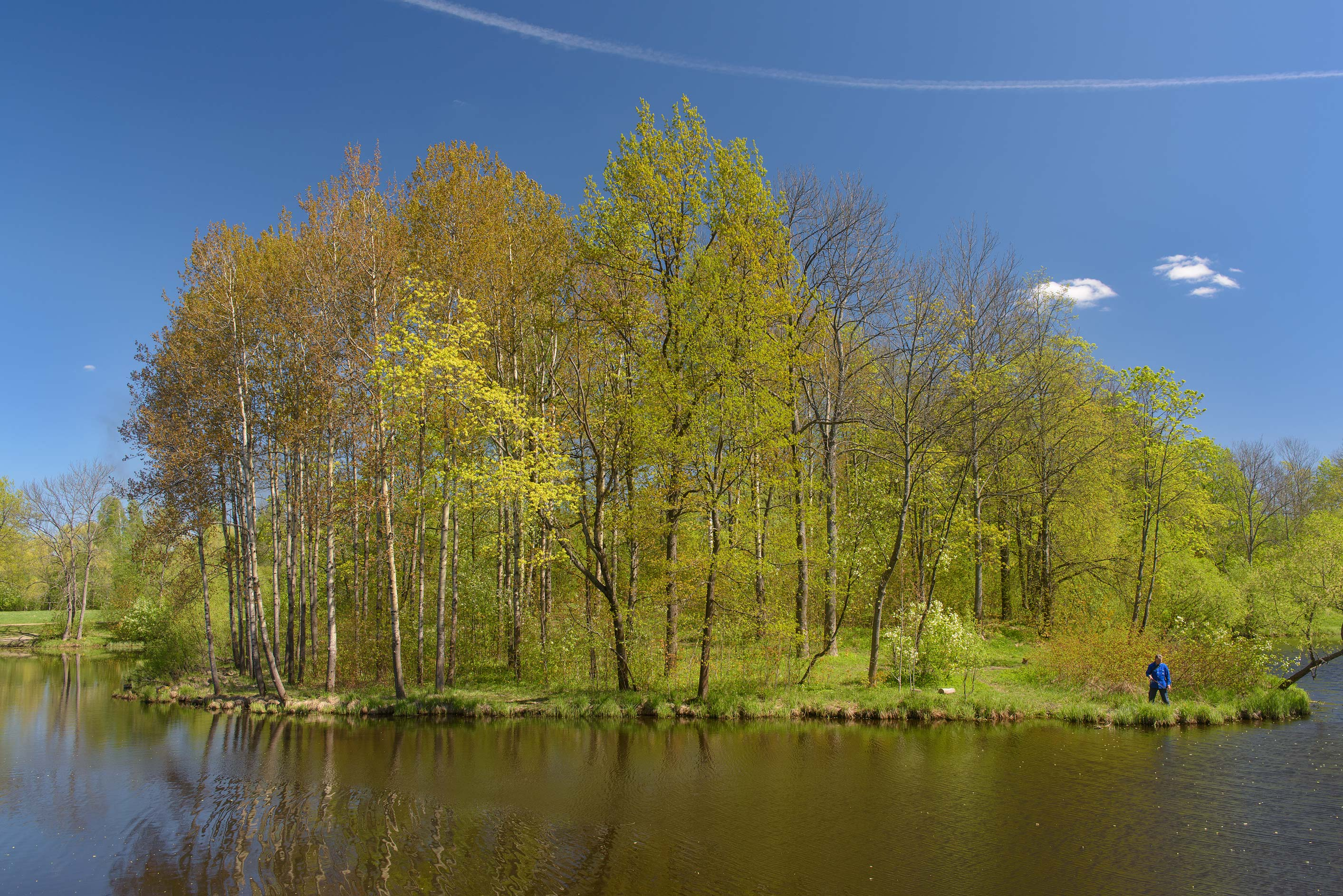 Bend of Lower Lamskiy Ponds in Alexander Park...south from St.Petersburg, Russia