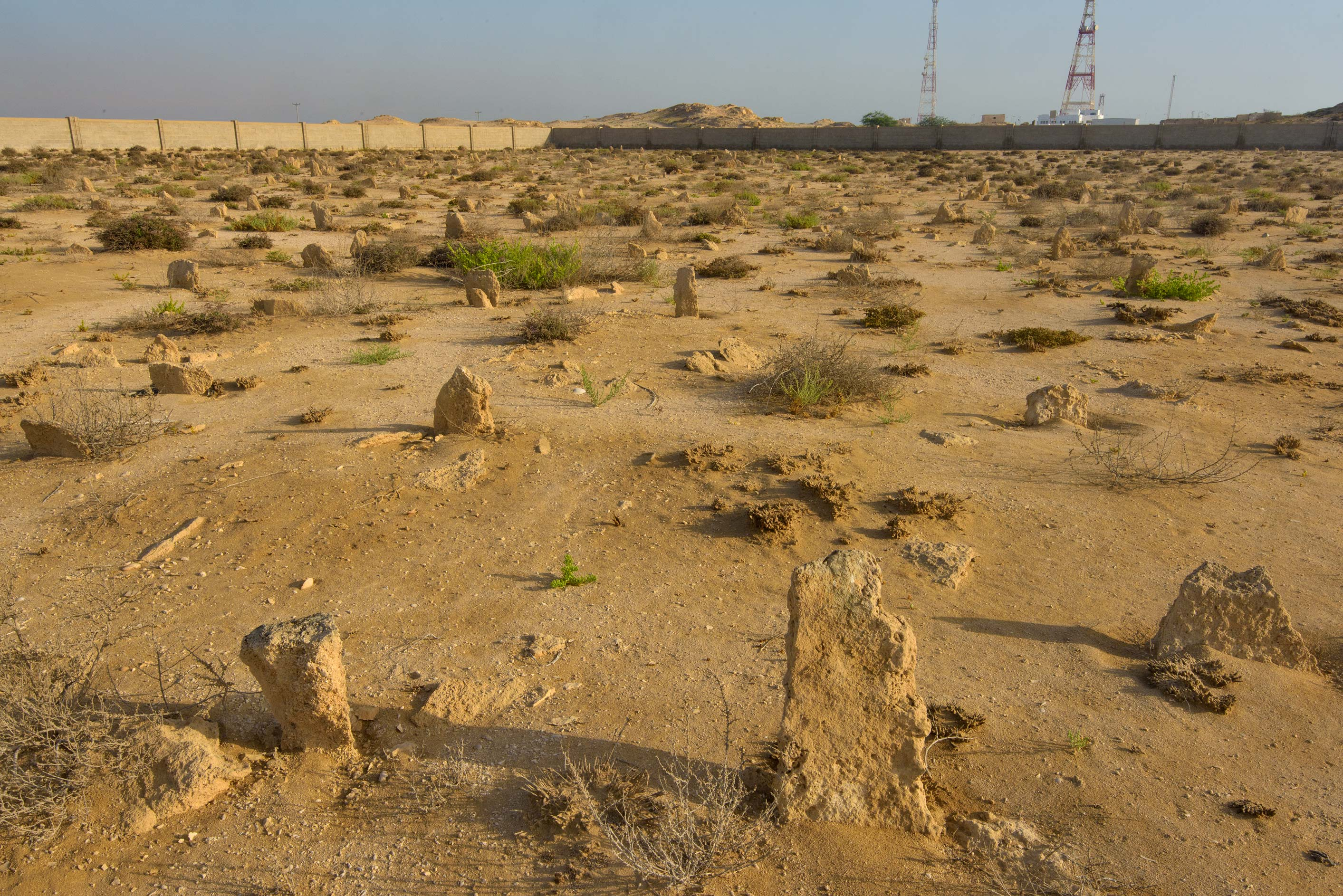 Cemetery in old fishing village (ghost town) of...eastern coast, Ash Shamal area. Qatar