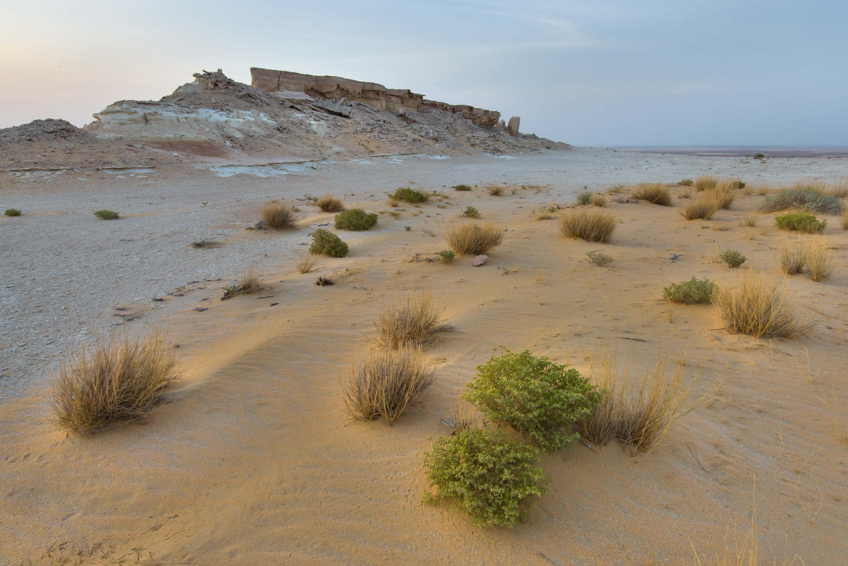 Sandy area on a tabletop mountain in Maszhabiya...Reserve near Abu Samra. Southern Qatar