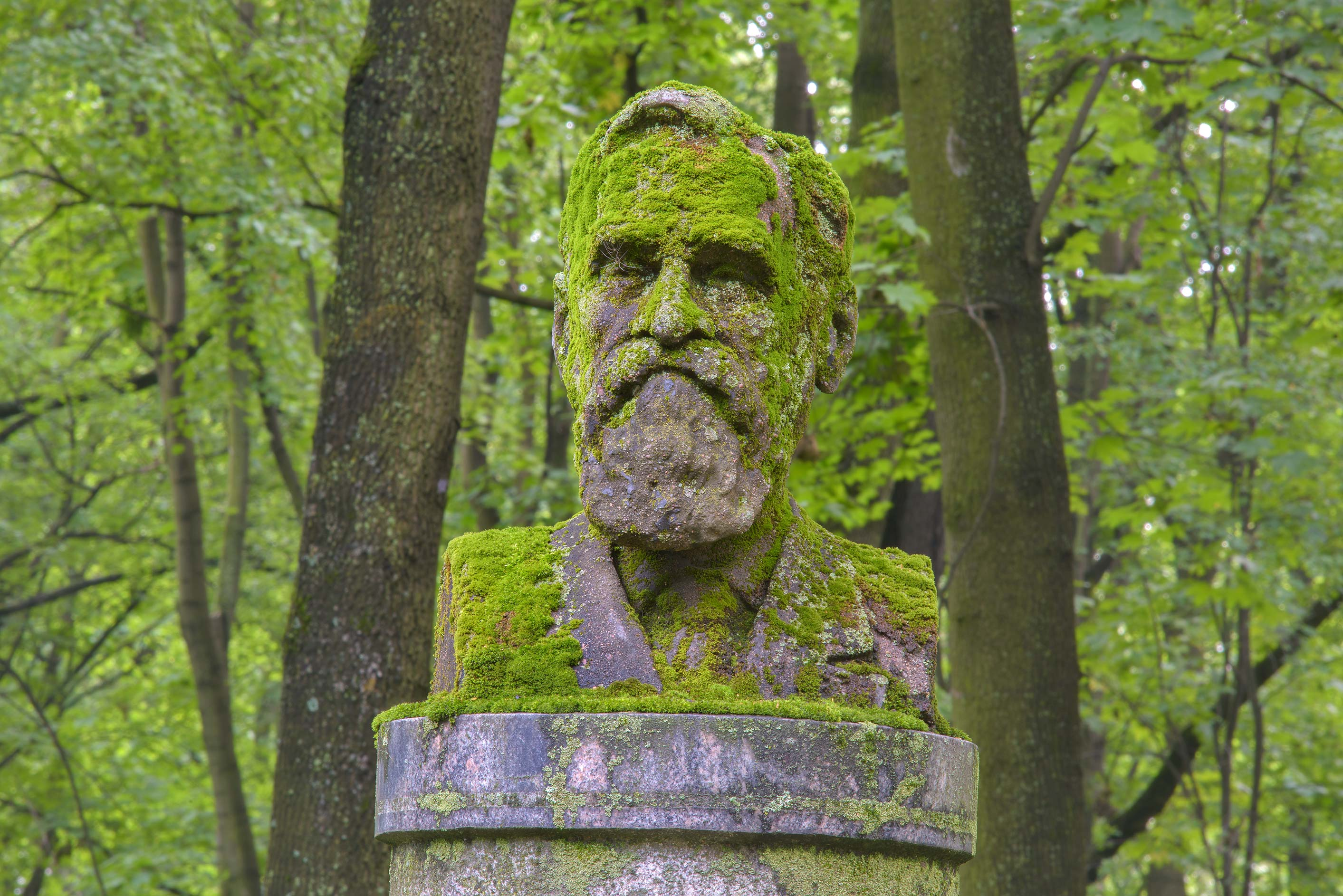 Mossy stone head of a Soviet physiologist E. A...Cemetery. St.Petersburg, Russia