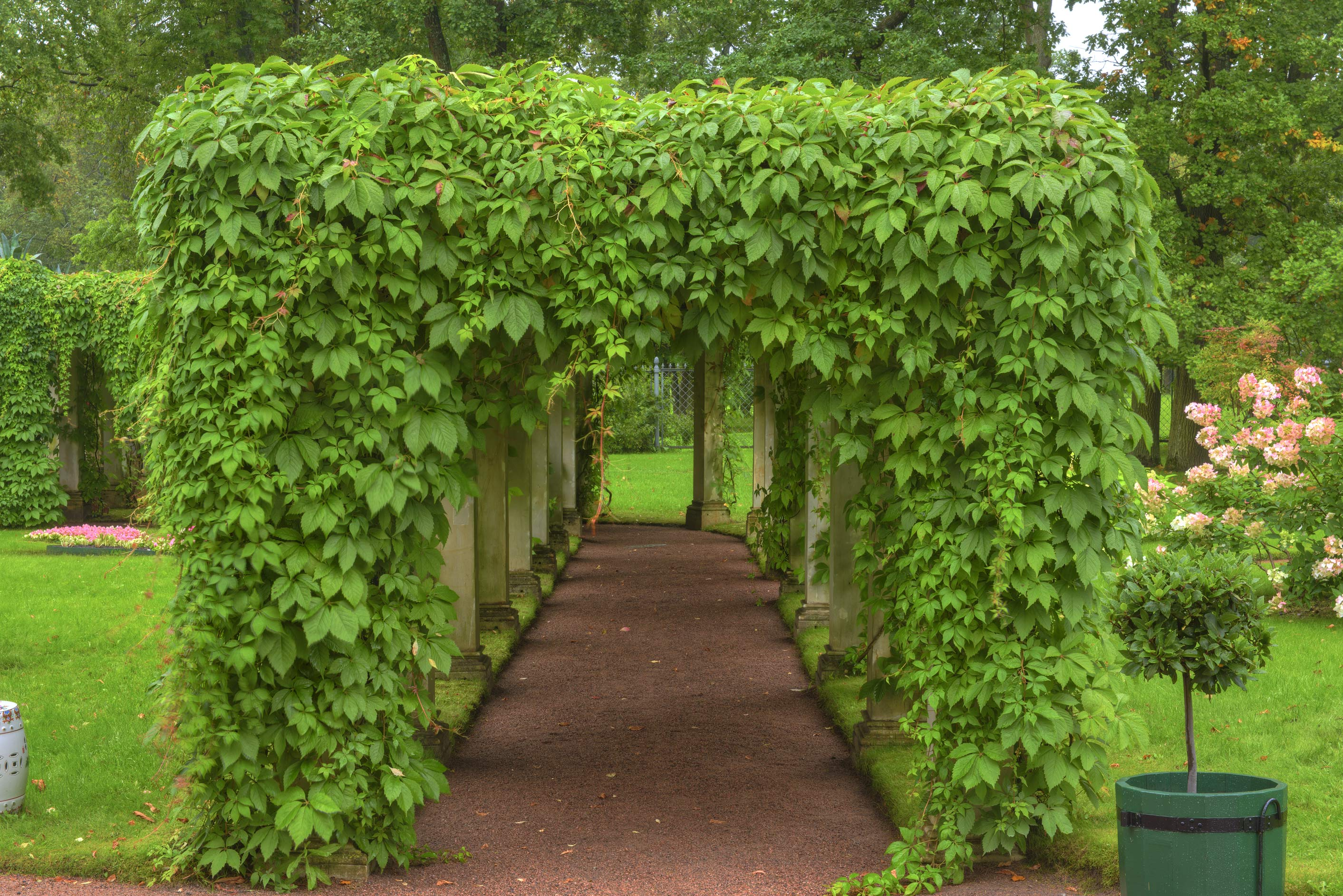 Arbor of Farm Palace in Alexandria Park in Peterhof, west from St.Petersburg. Russia