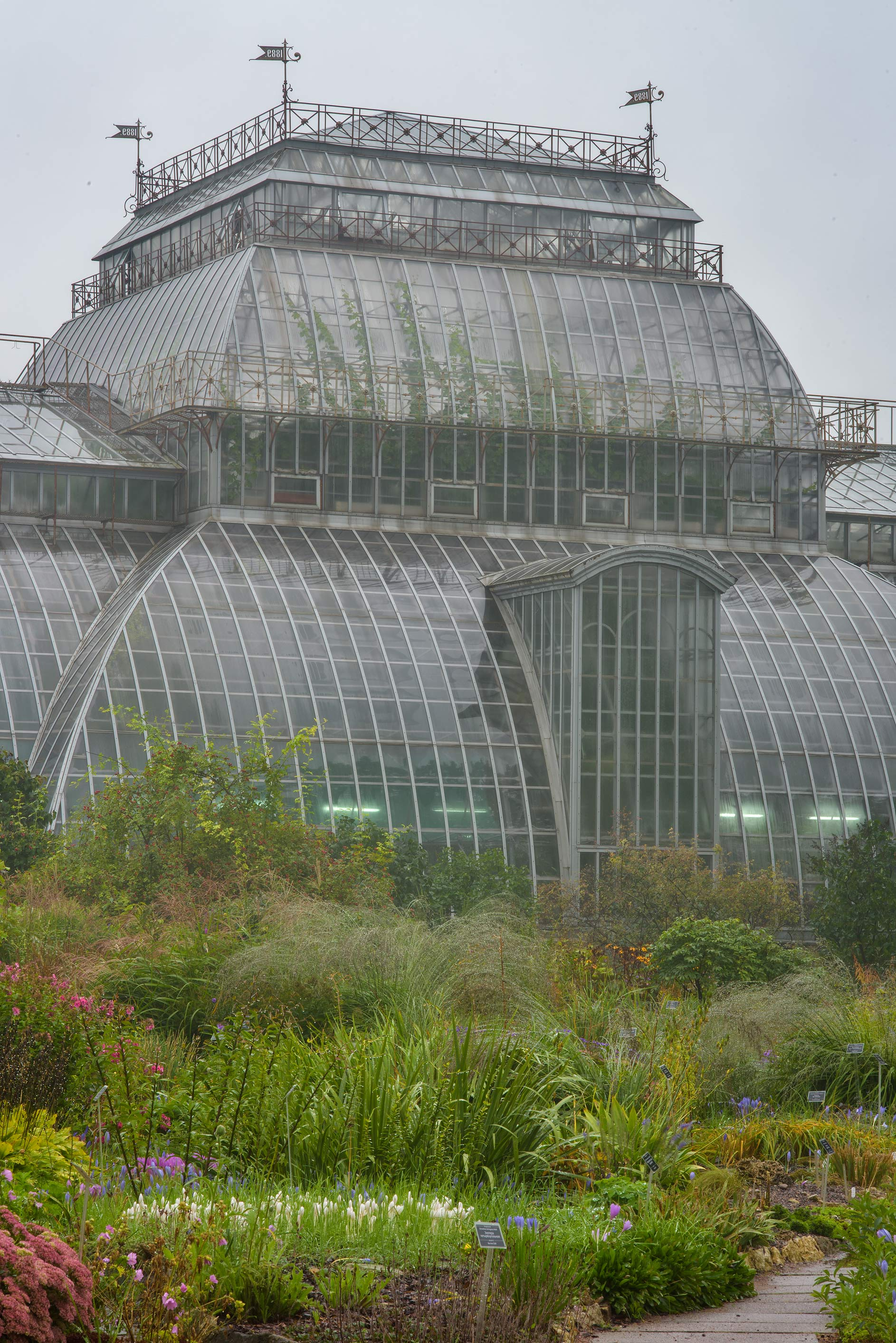 Large greenhouse in Botanic Gardens of Komarov Botanical Institute. St.Petersburg, Russia