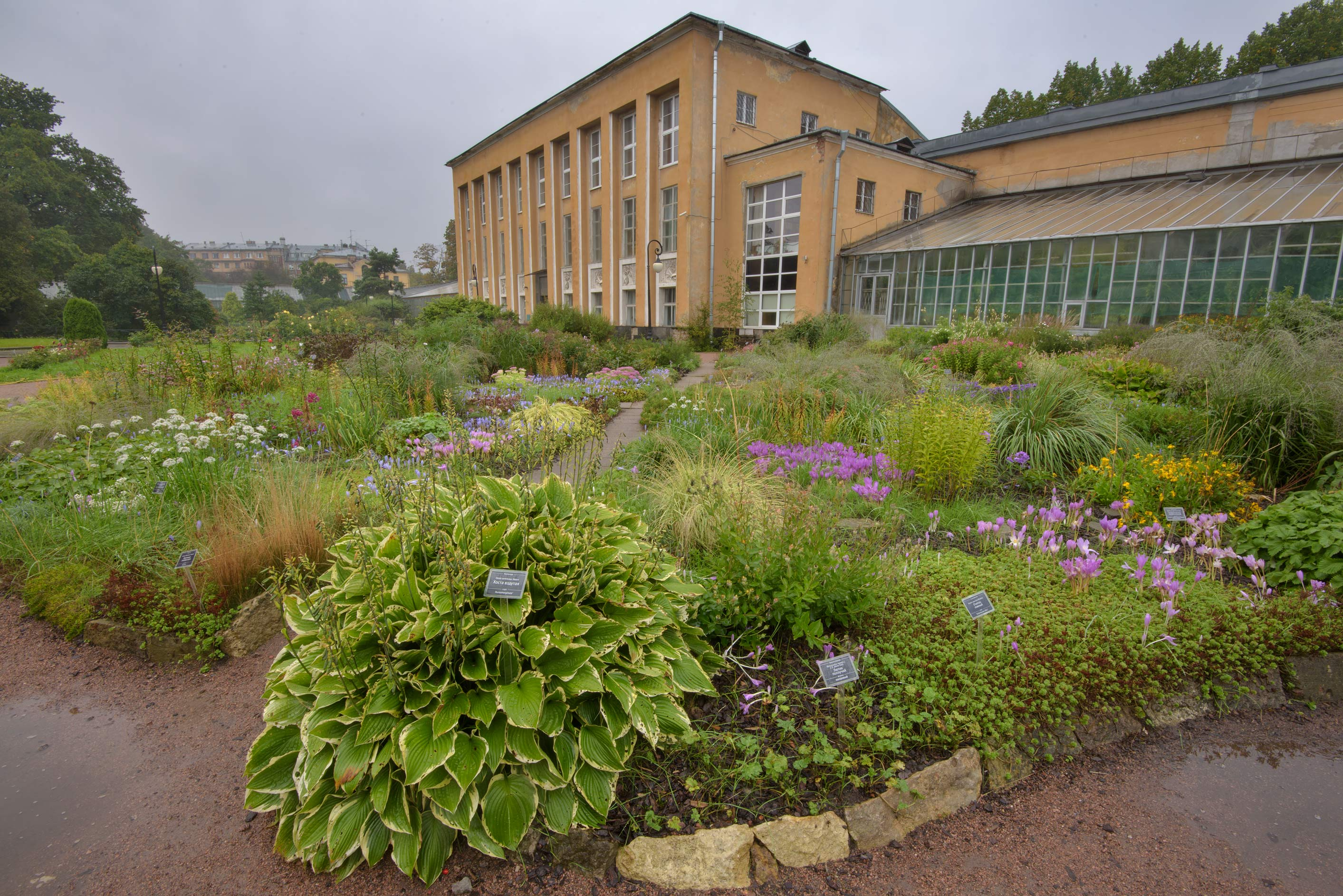 slideshow 190402 flowerbeds in botanic gardens of