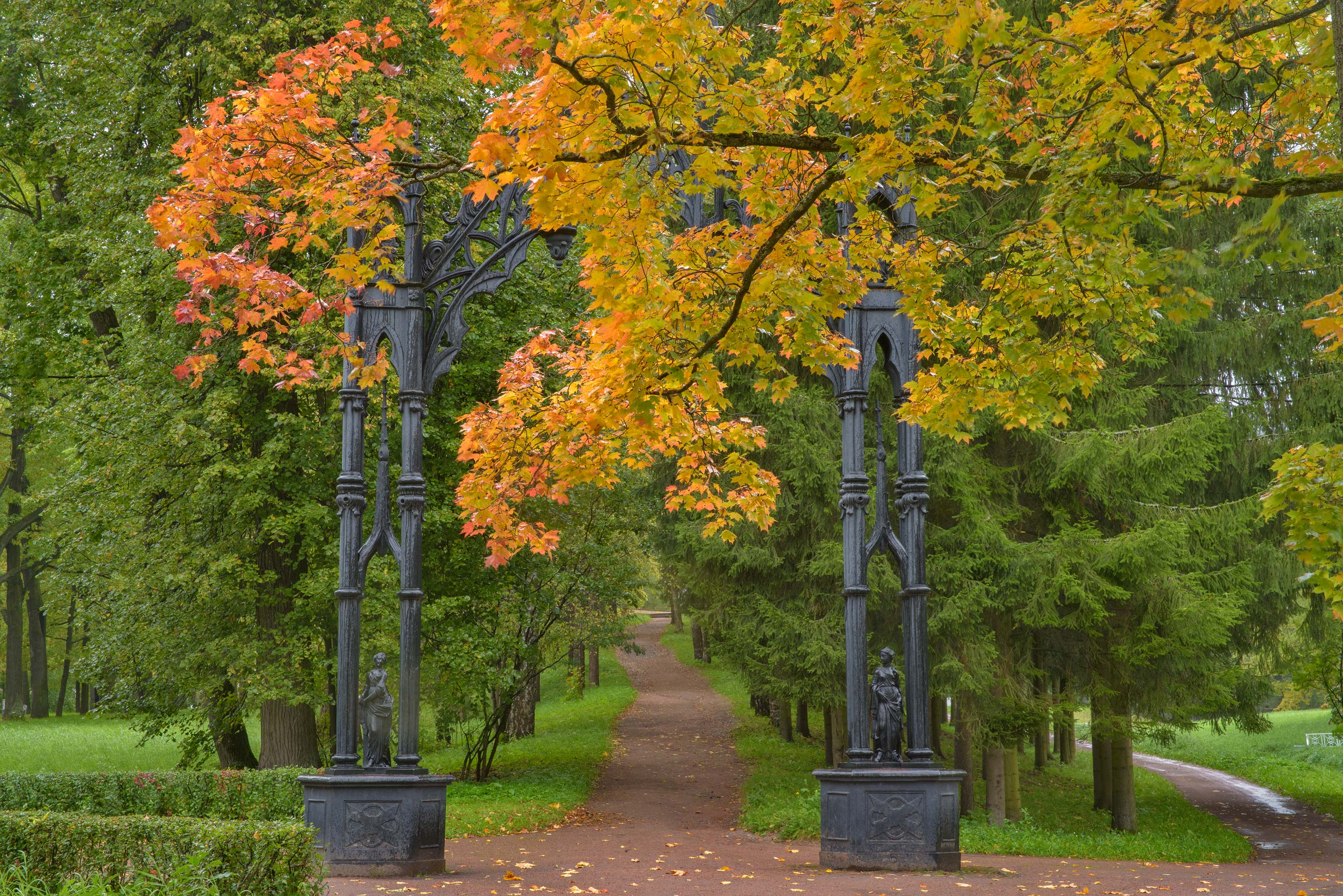 Gothic Gate and spruce alley in Catherine Park...Selo) near St.Petersburg, Russia
