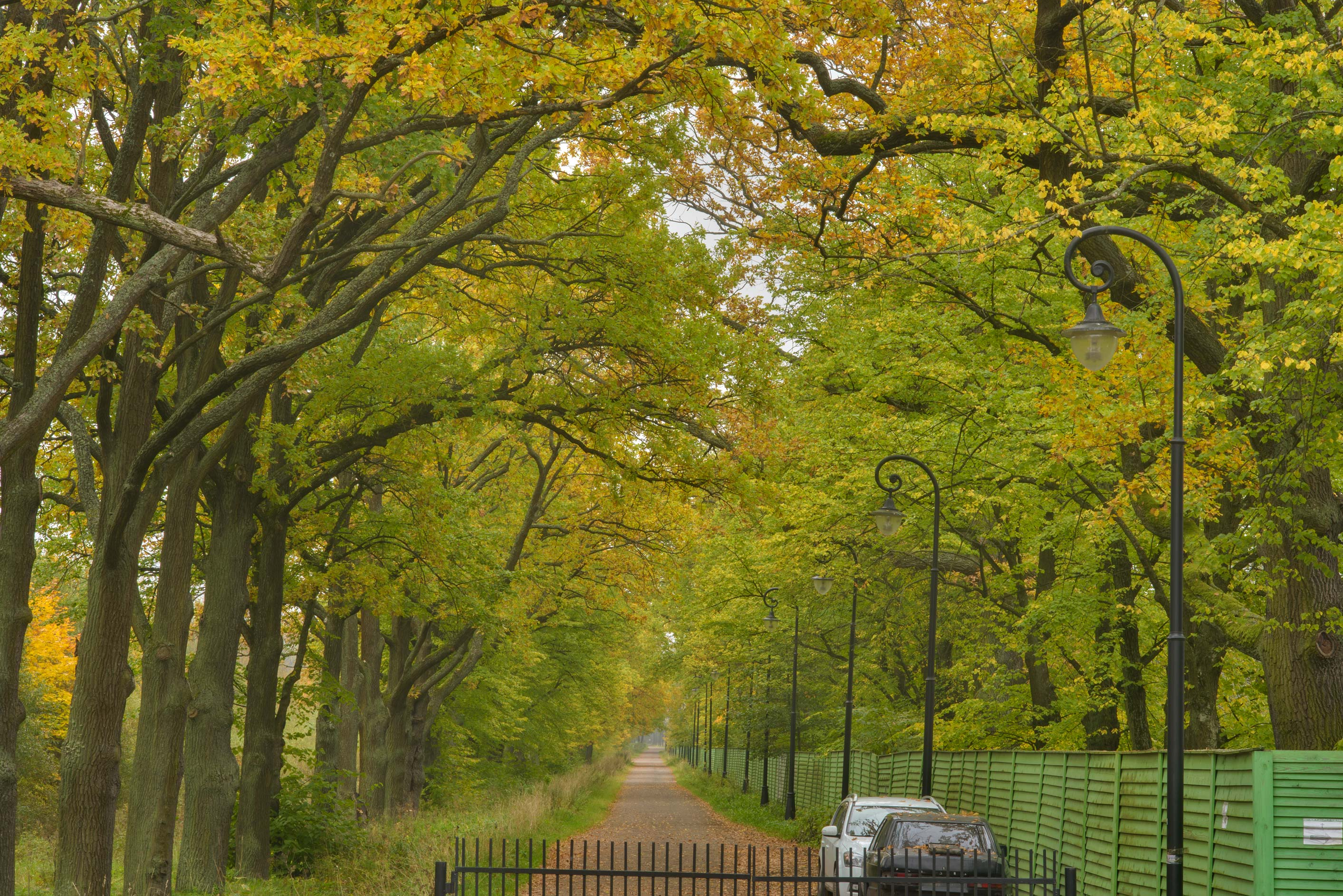 Lower Rd. near Alexandria Park. Peterhof, a suburb of St.Petersburg, Russia