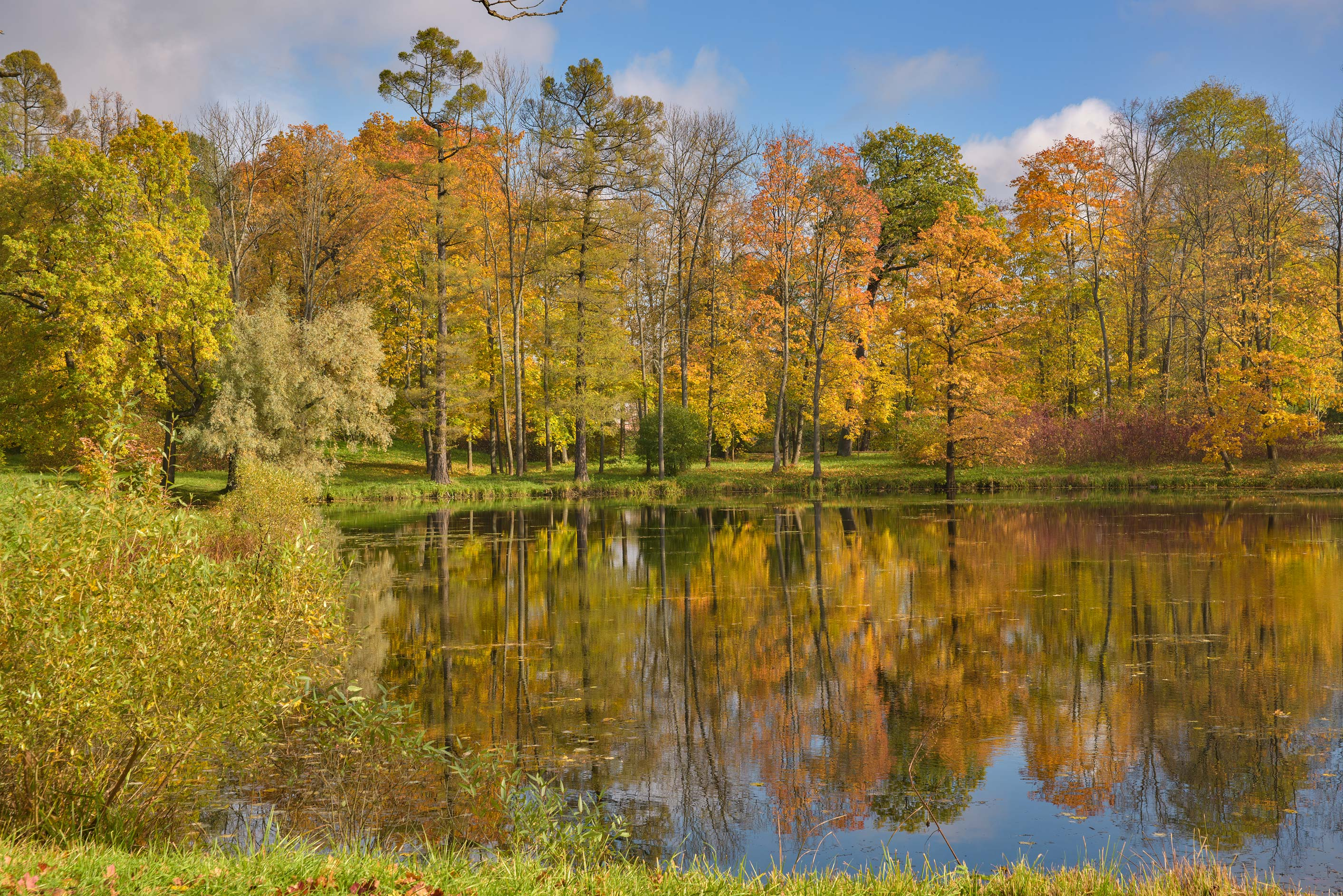 Fall colors of Vittolovsky Shapel Pond in...south from St.Petersburg, Russia
