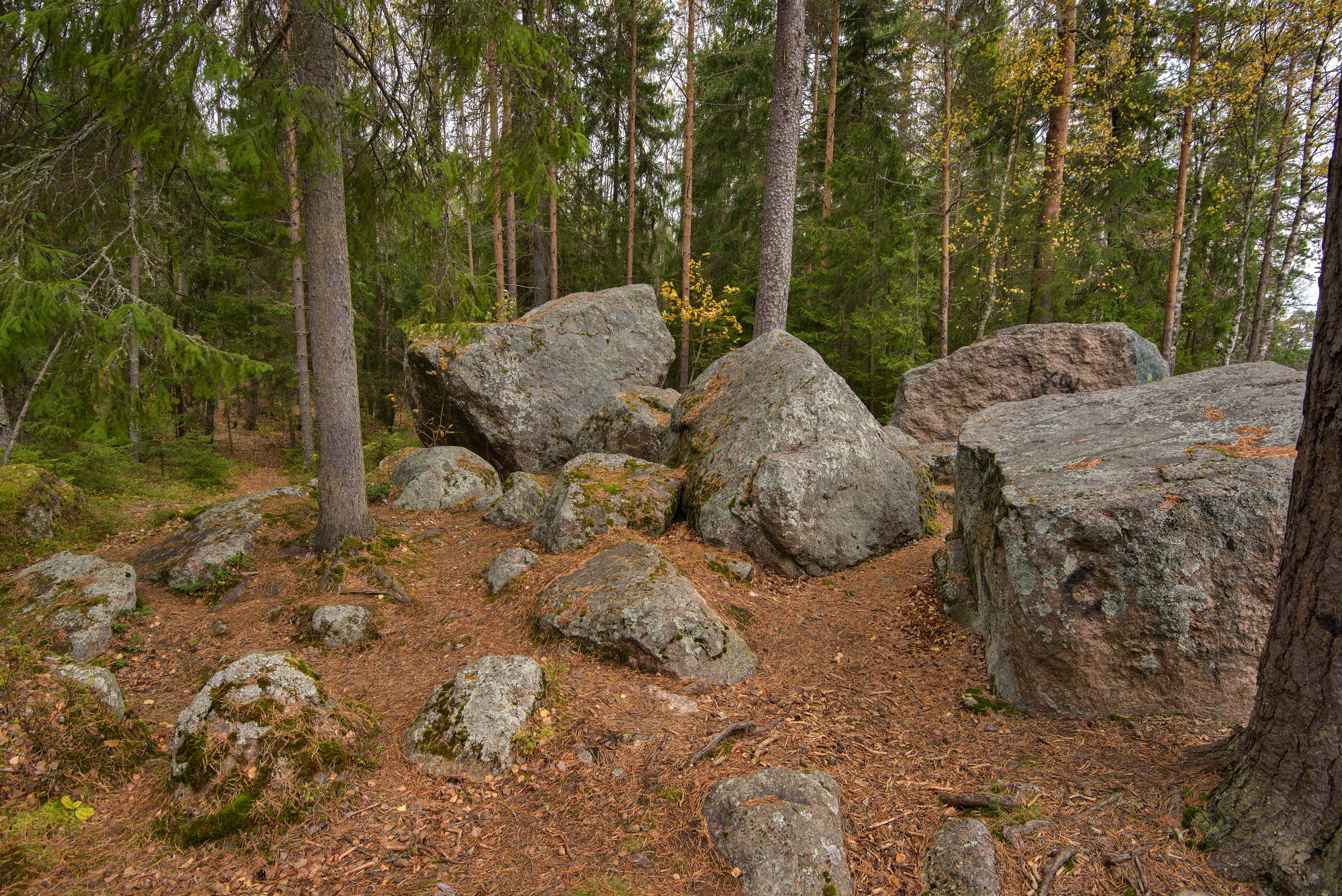 Large boulders near Monrepo (Mon Repos) Park. Vyborg, north from St.Petersburg, Russia