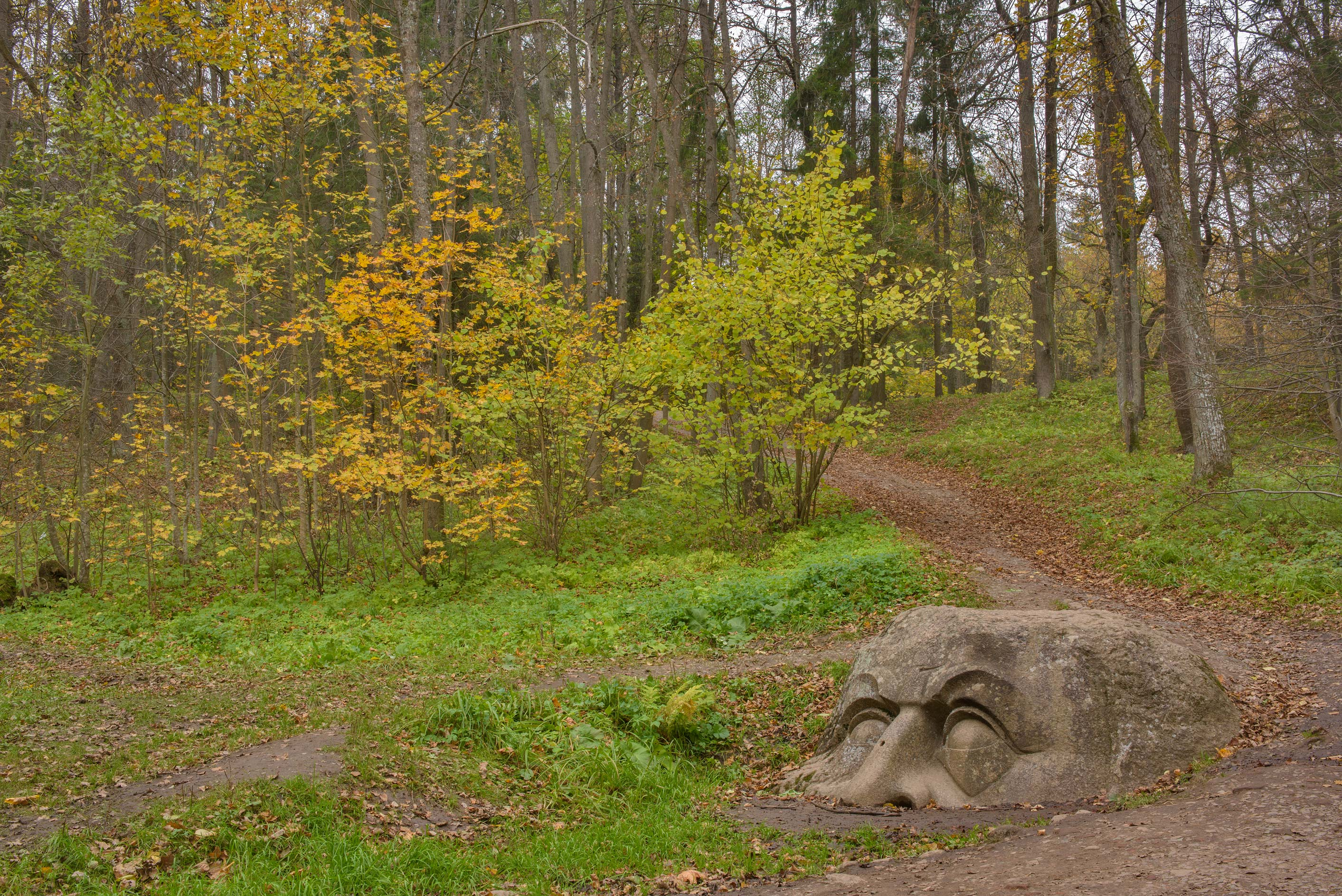 Stone head made from a boulder in Sergievka Park...west from St.Petersburg, Russia