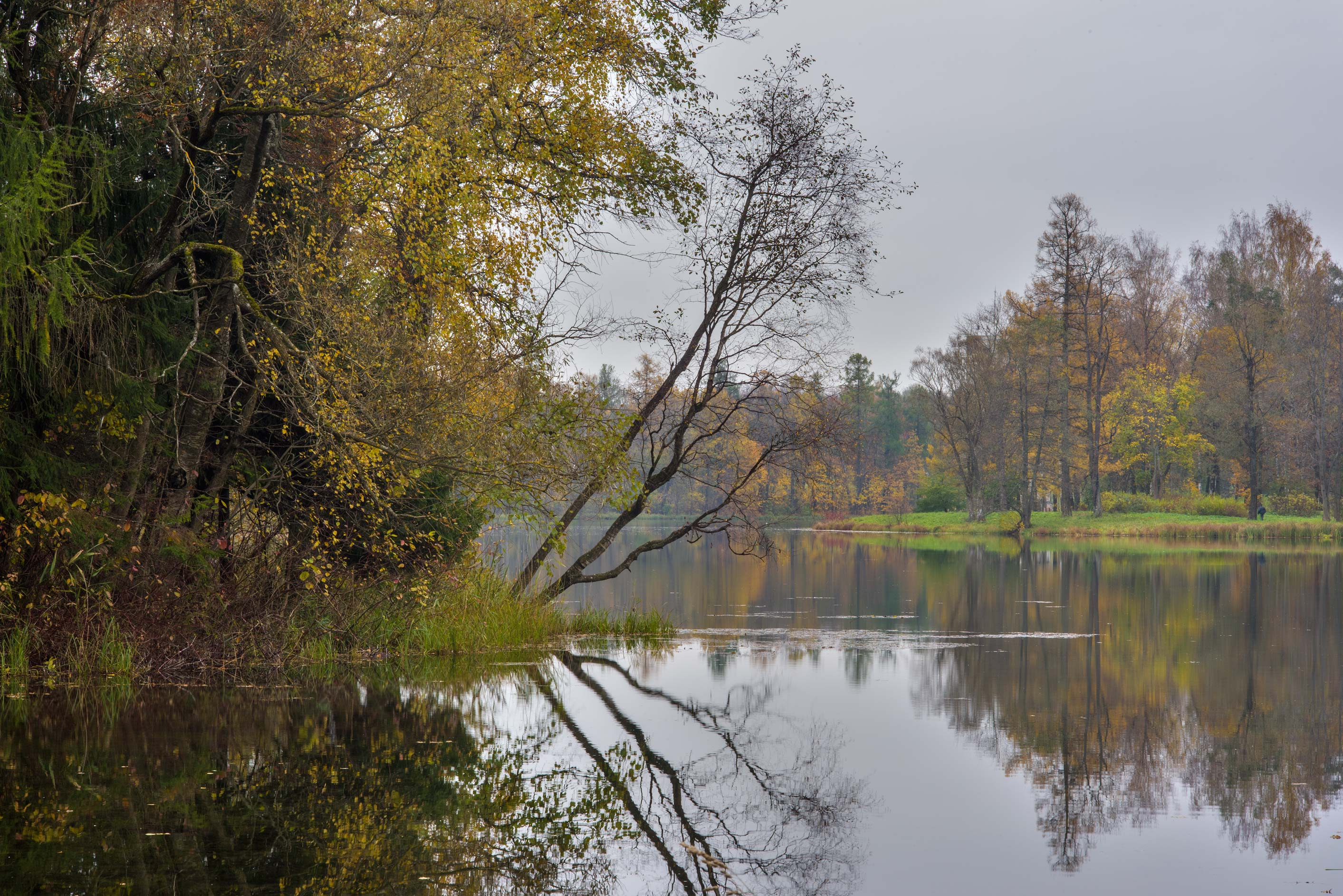 An island of Beloe Lake in Gatchina Park. Gatchina, a suburb of St.Petersburg, Russia