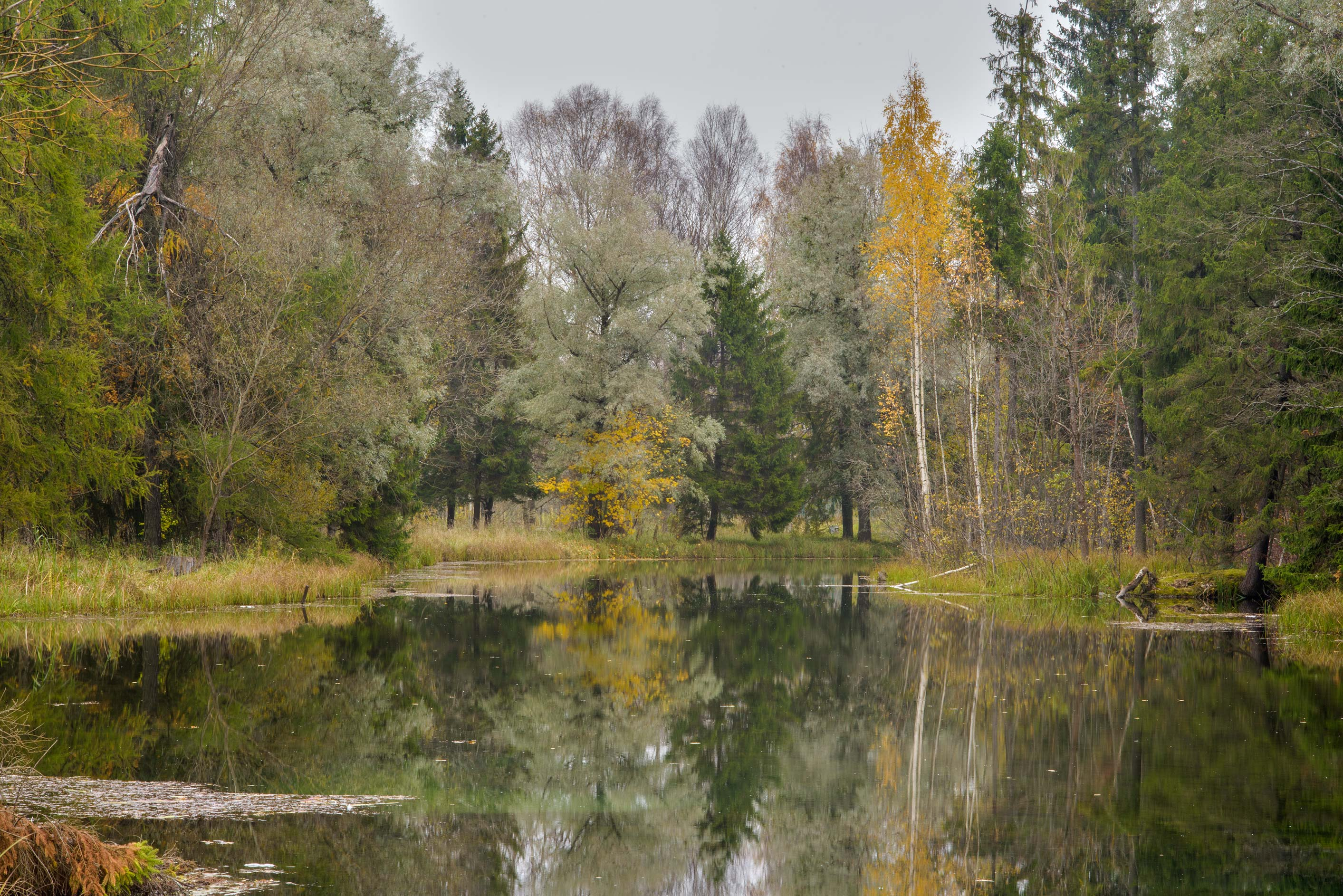 Long Island of Beloe Lake in Gatchina Park. Gatchina, a suburb of St.Petersburg, Russia