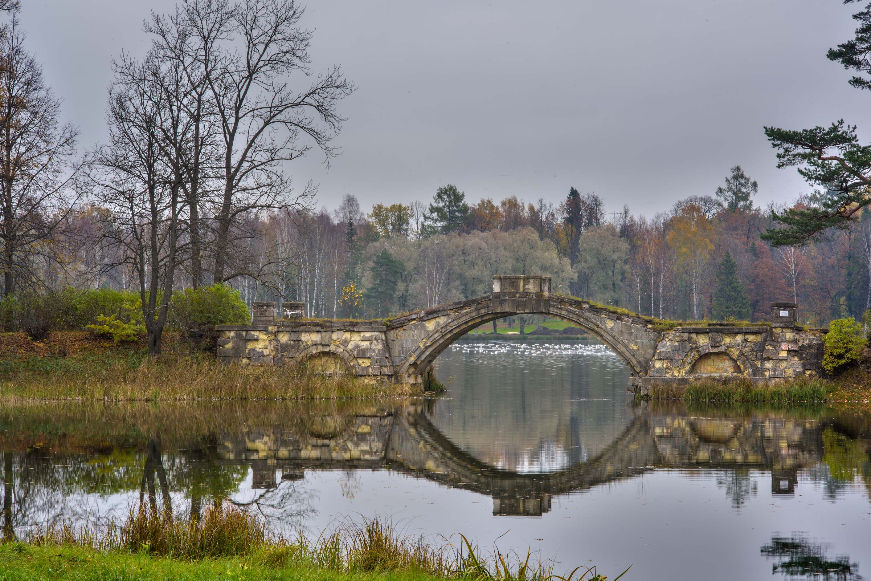 Humpy stone bridge of Beloe Lake in Gatchina Park...a suburb of St.Petersburg, Russia