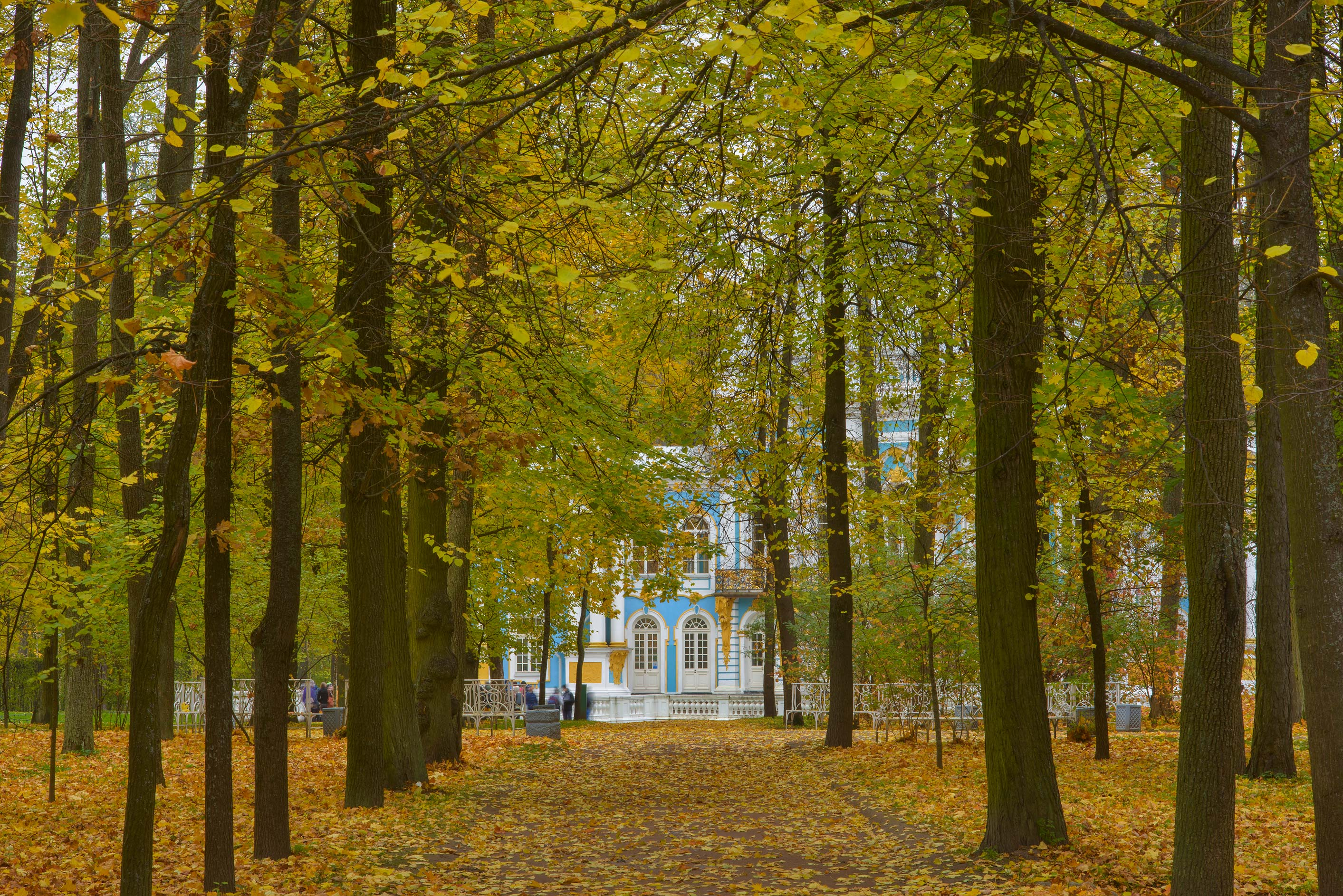 Alley near Hermitage Pavilion in Catherine Park...Selo) near St.Petersburg, Russia