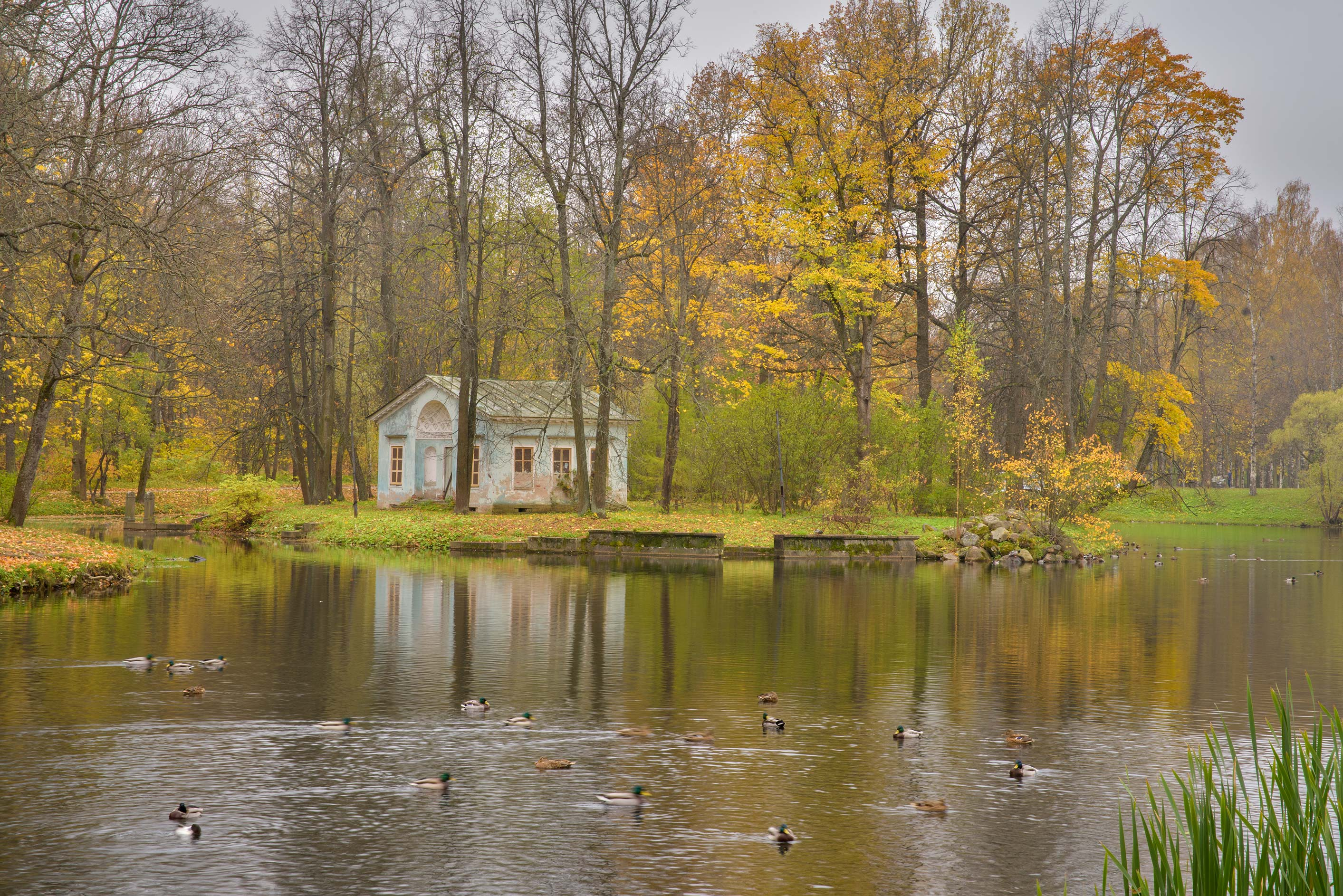 Children's Pond in Alexander Park. Pushkin...Selo) near St.Petersburg, Russia