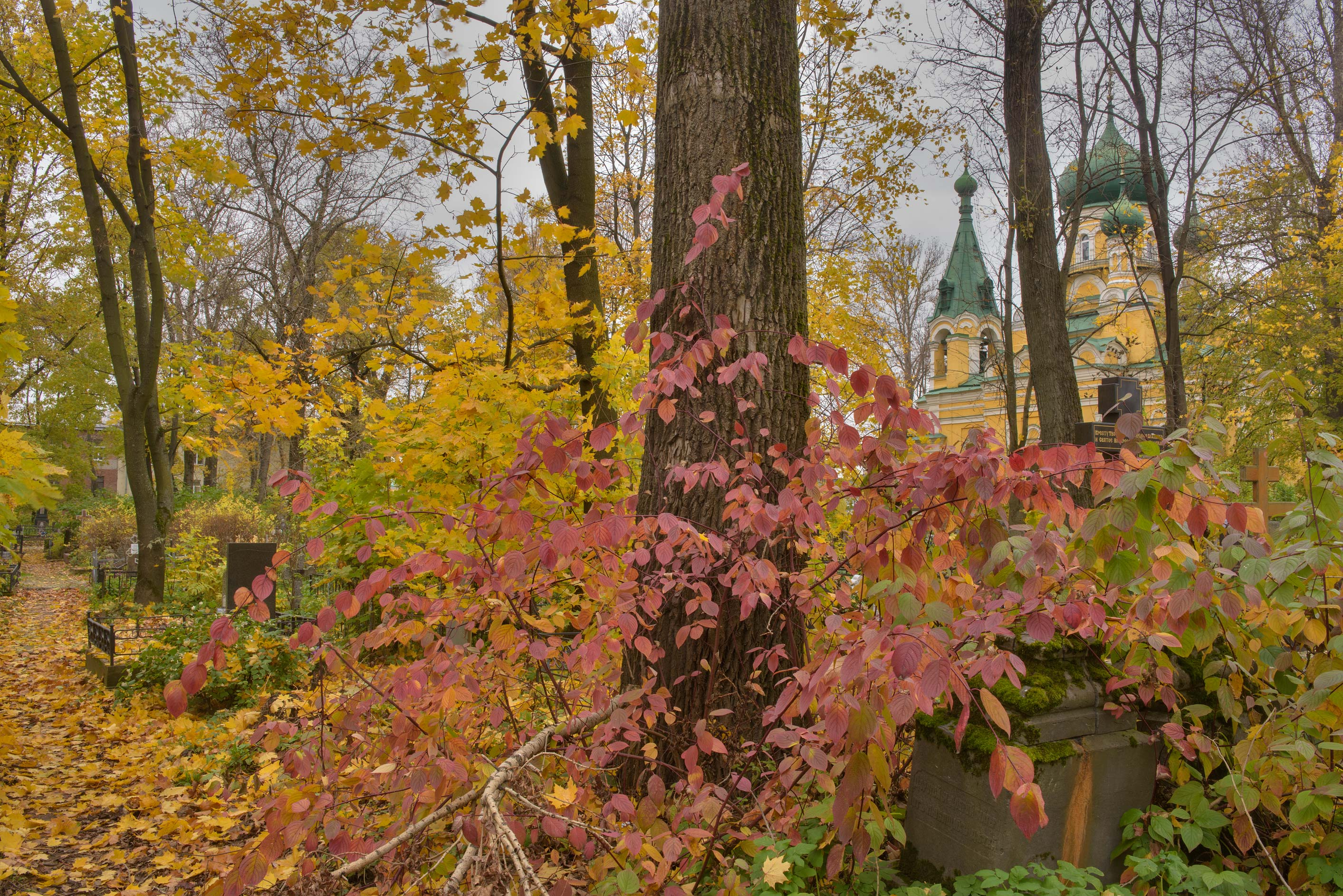 Fall colors of Tube (Trubnaya) Lane on Volkovo Cemetery. St.Petersburg, Russia